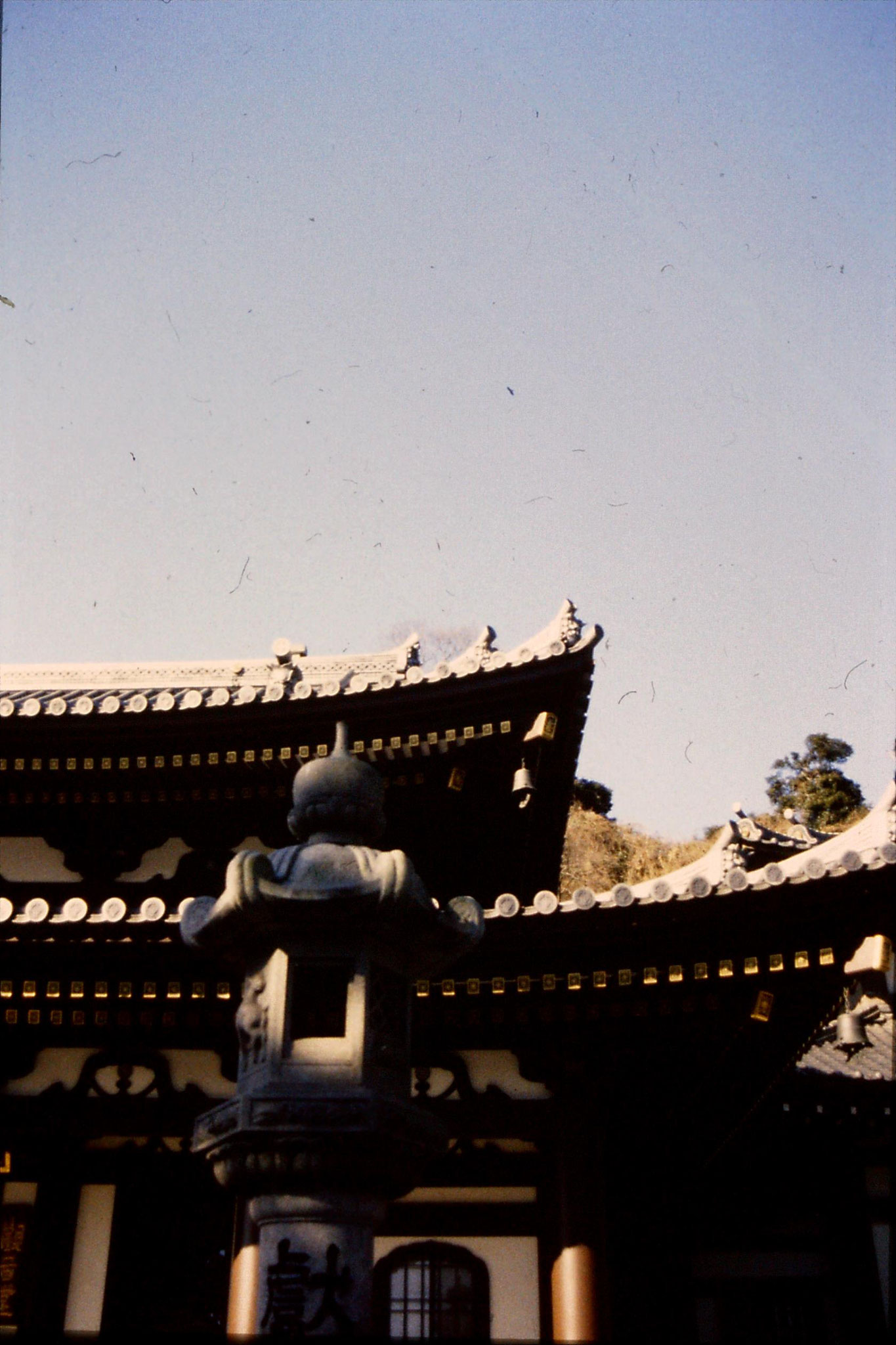 29/1/1989: 35: kite over temple