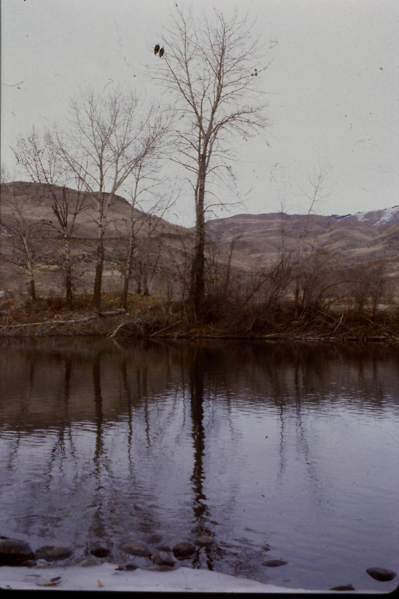 3/2/1991: 13: Boise