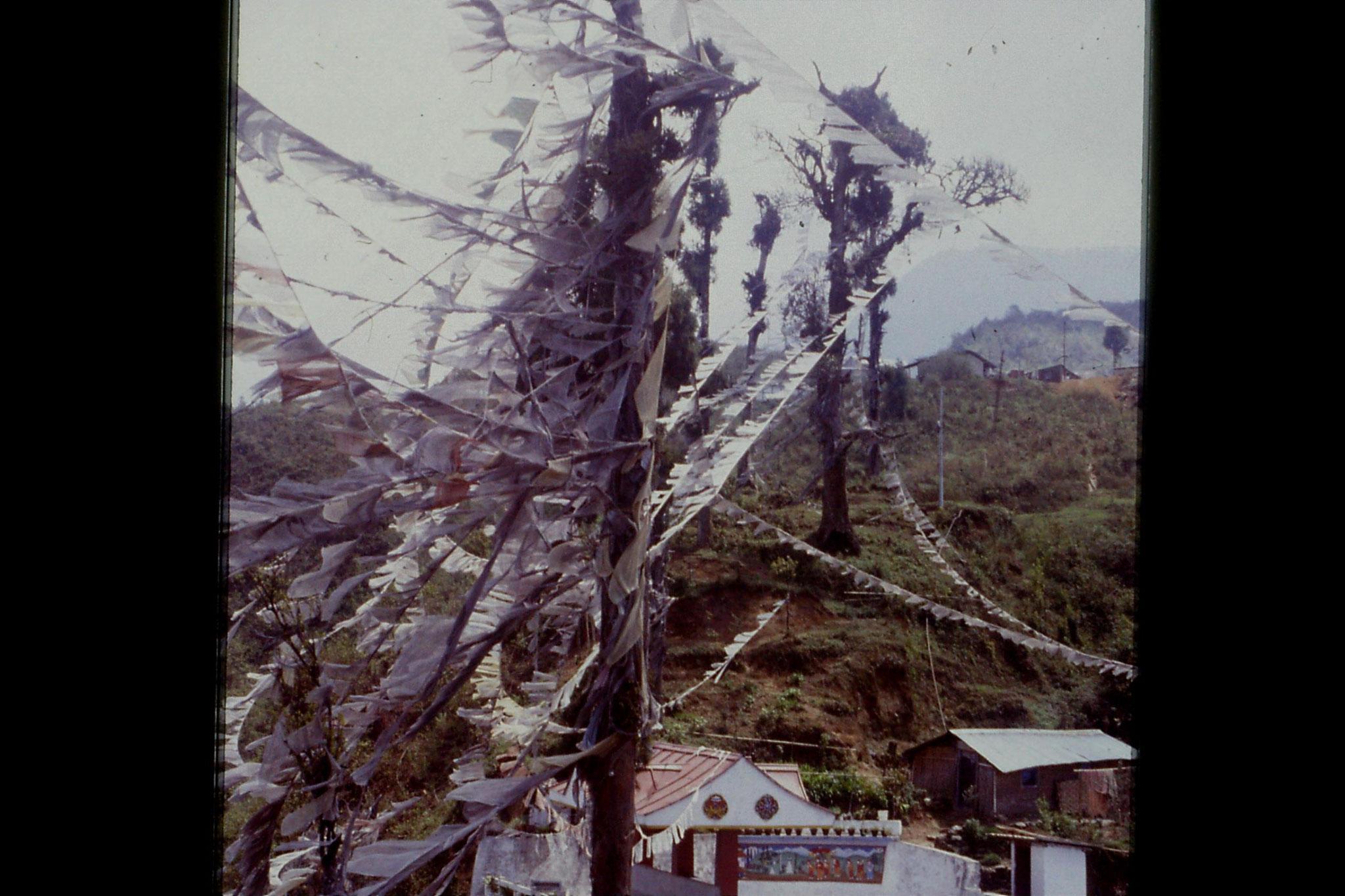29/4/1990: 1: Tashiding gompas