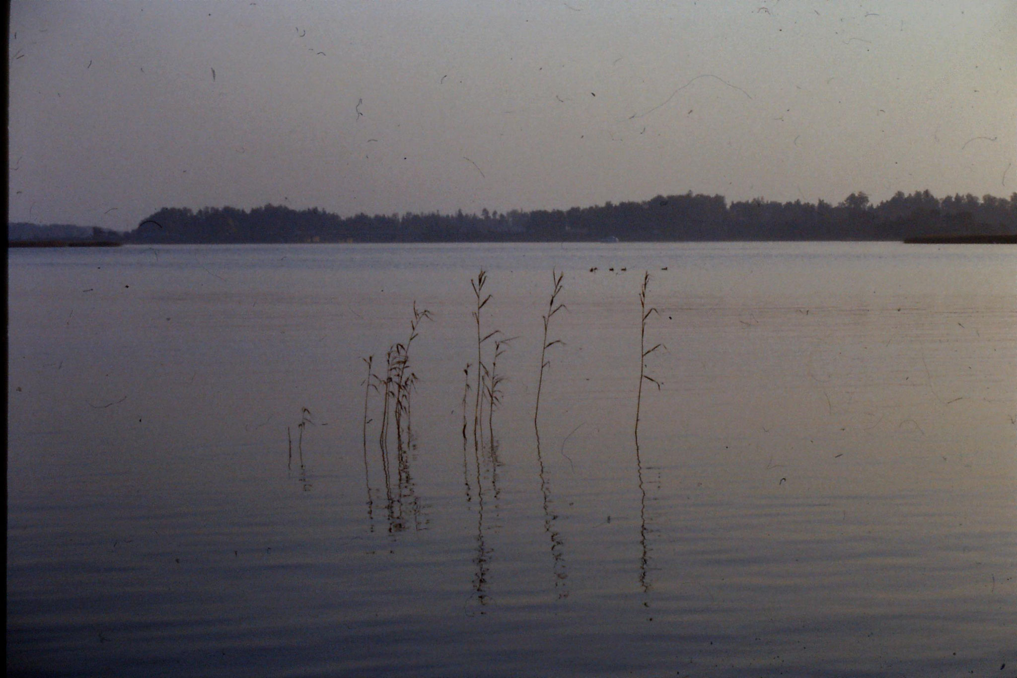 5/10/1988: 2: looking south from Otaniemi