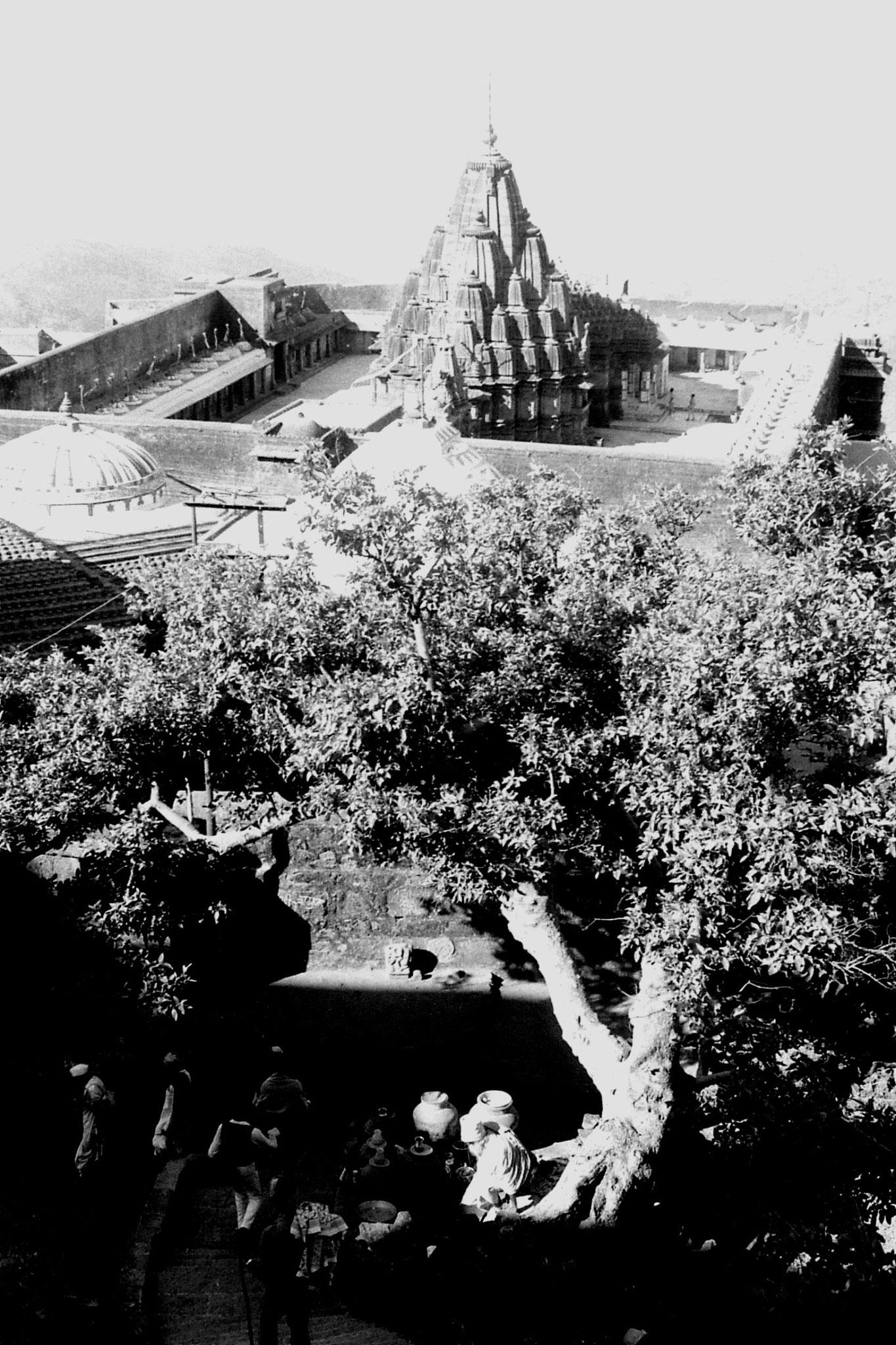 12/12/1989: 29: Junagardh, sadhu under tree