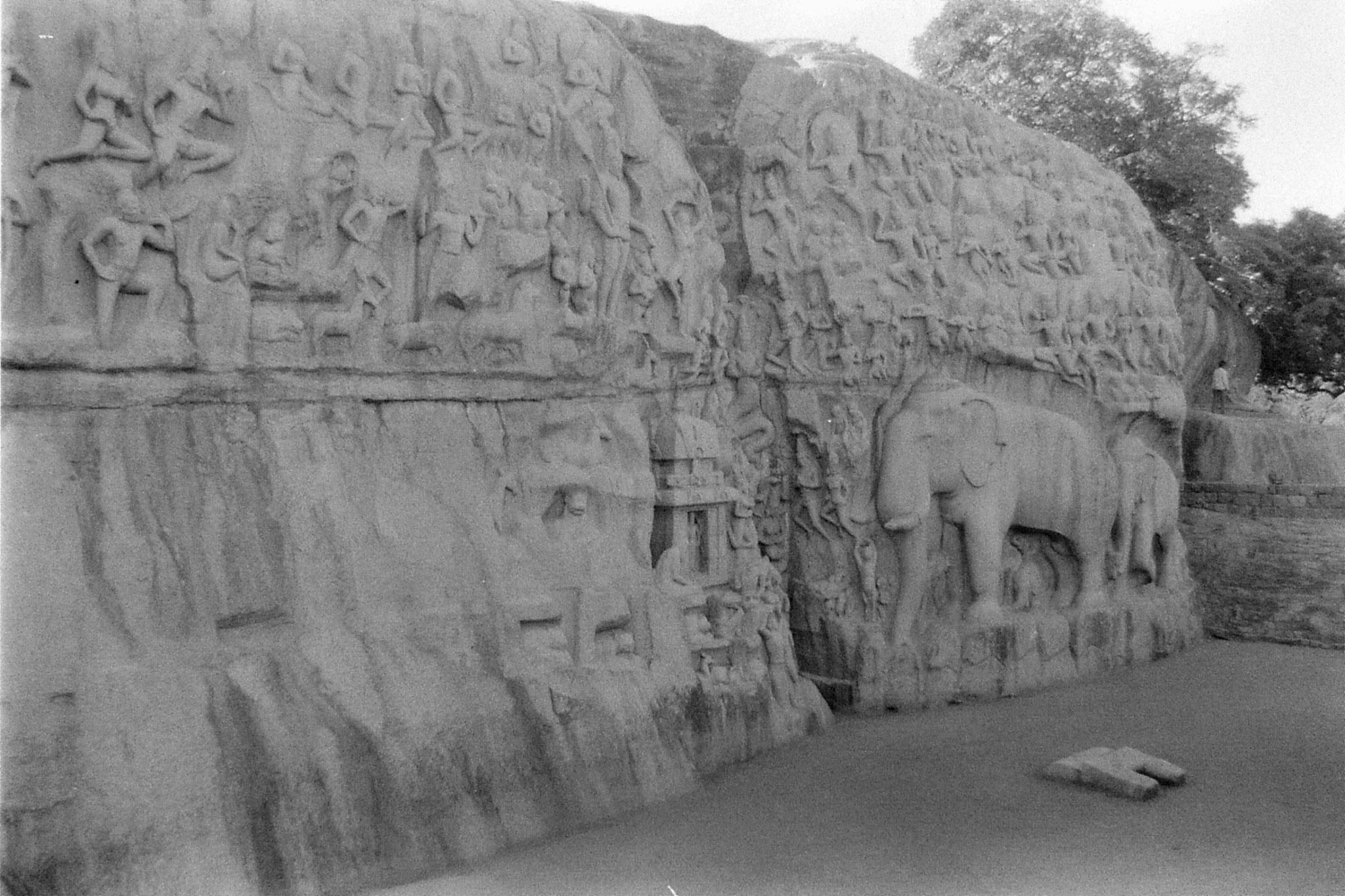 19/1/90: 28: Mahabalipuram - Arjuna penance to Shiva
