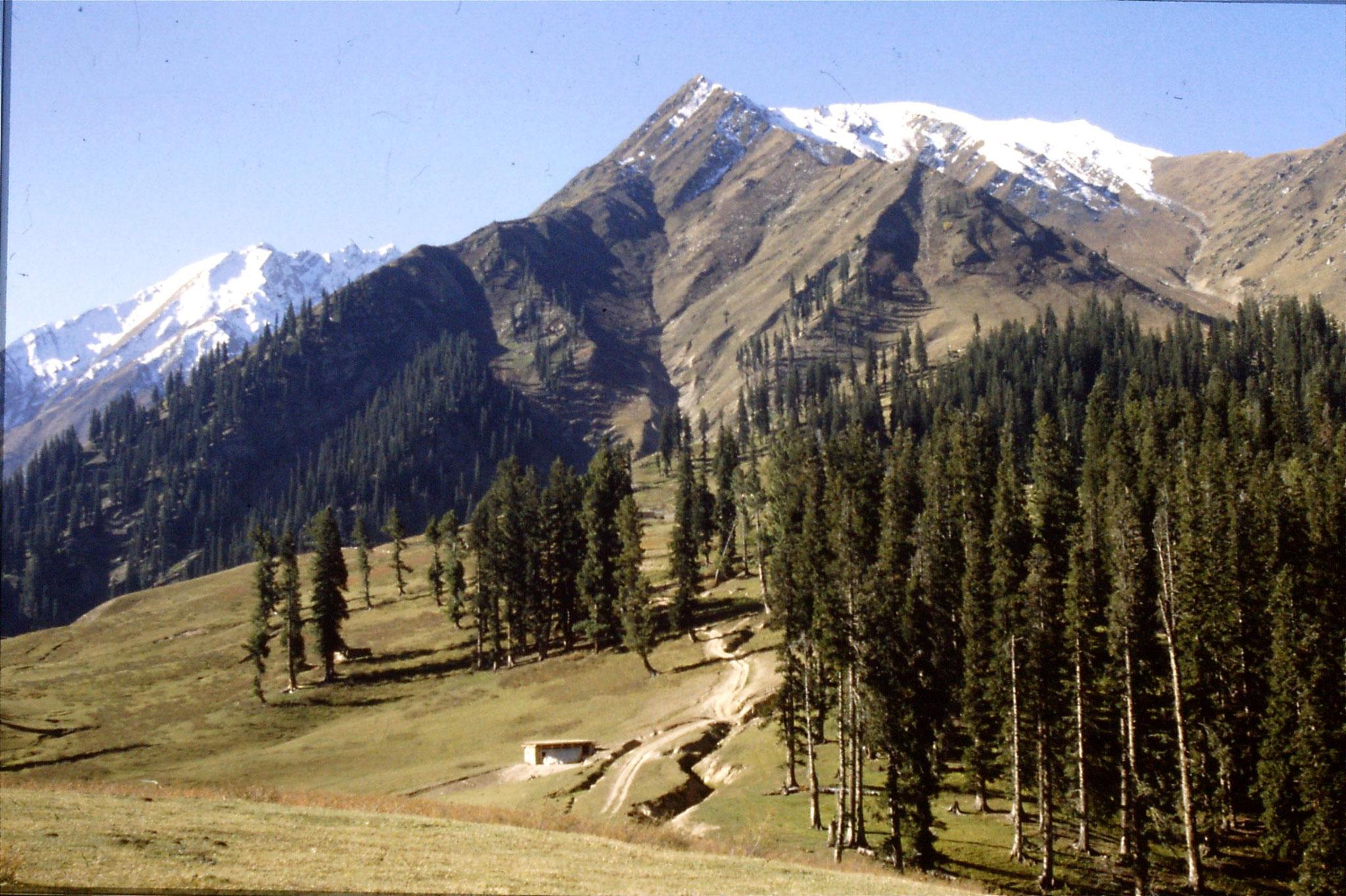 6/10/1989: 20: Lalazar pastures