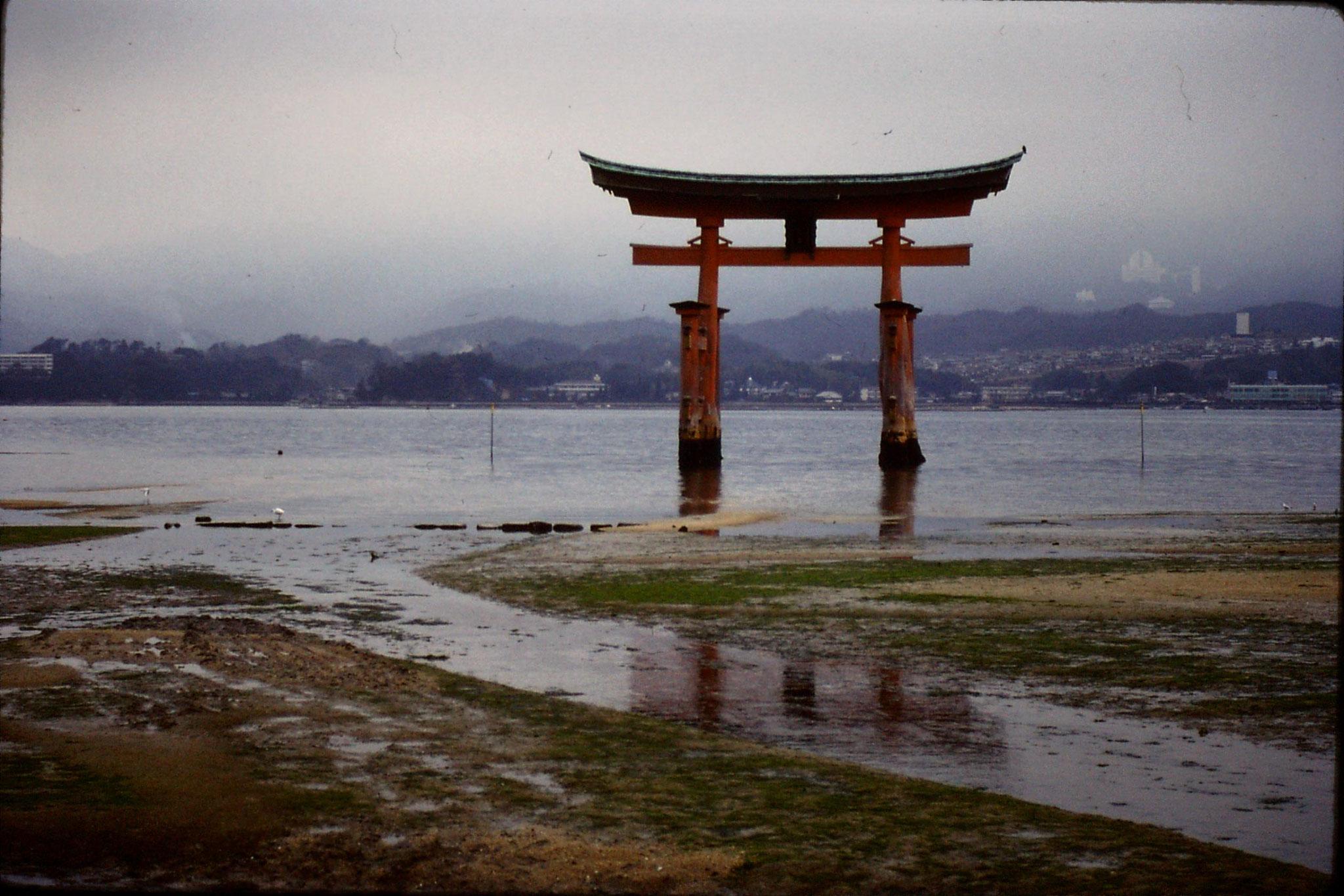 23/1/1989: 11: Miyajima