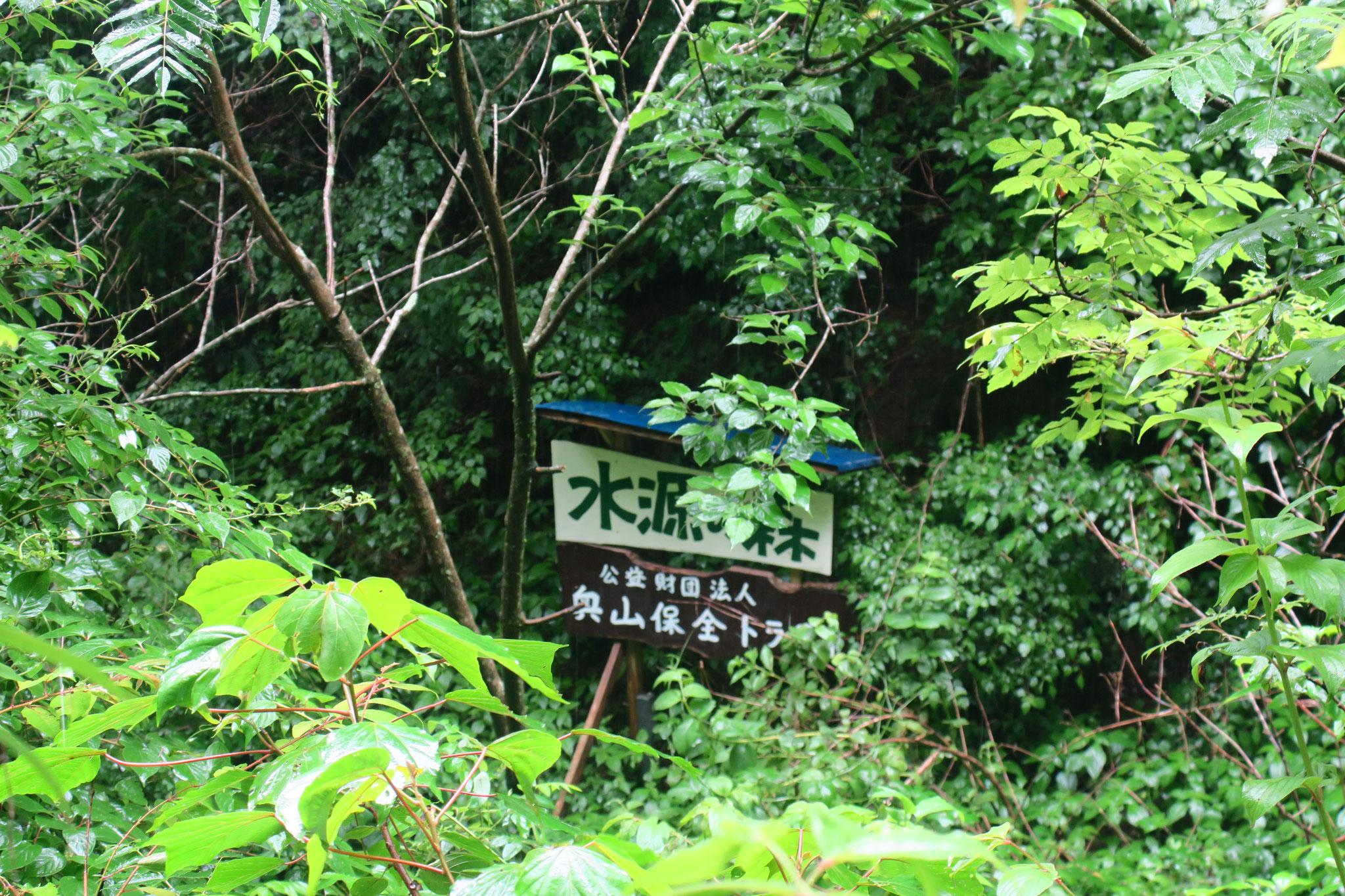 高千穂トラスト地(宮崎県高千穂町) 2009年取得 約2ha