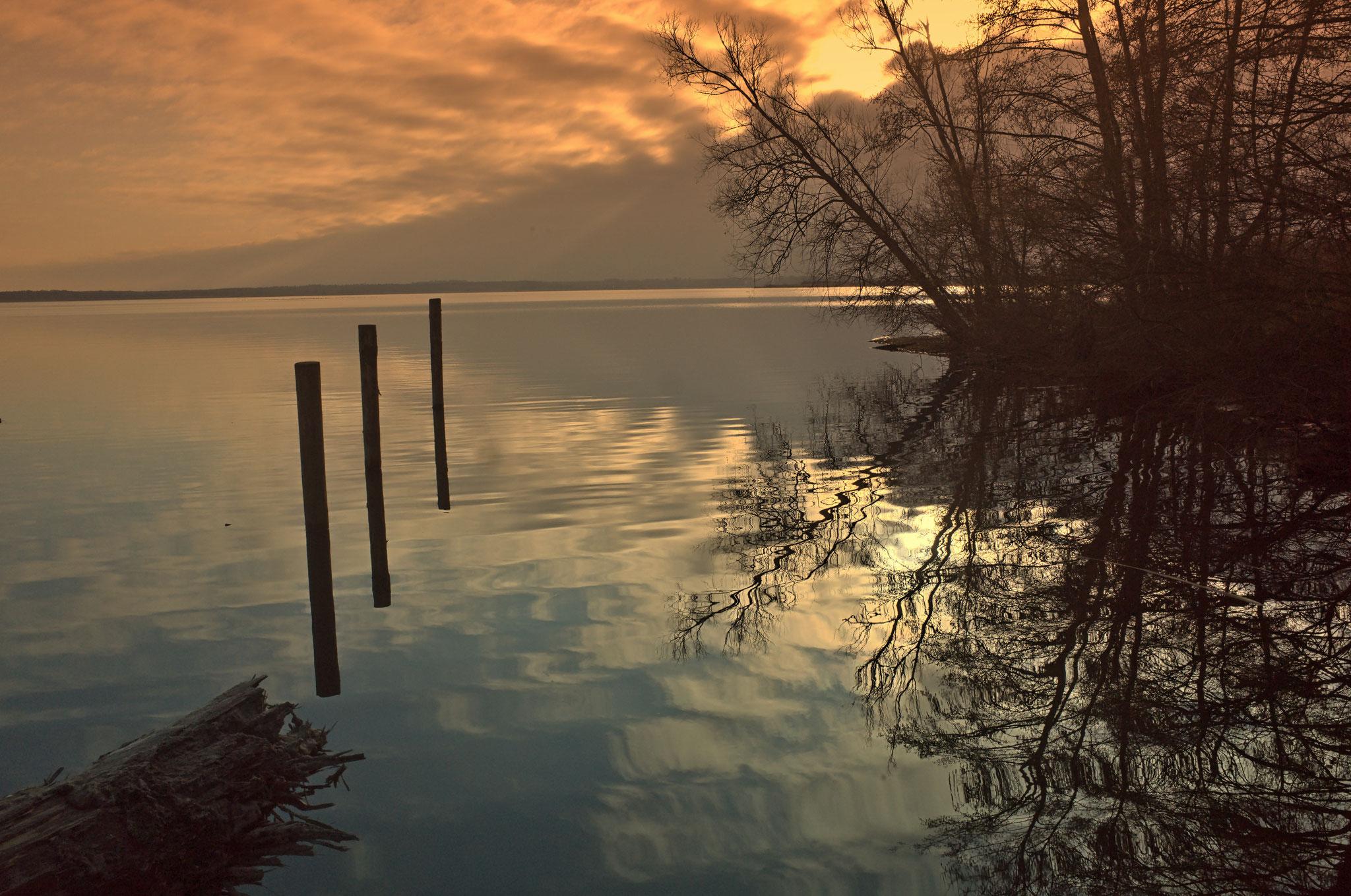 Ufer des  Fleesensee am 15.12.2018
