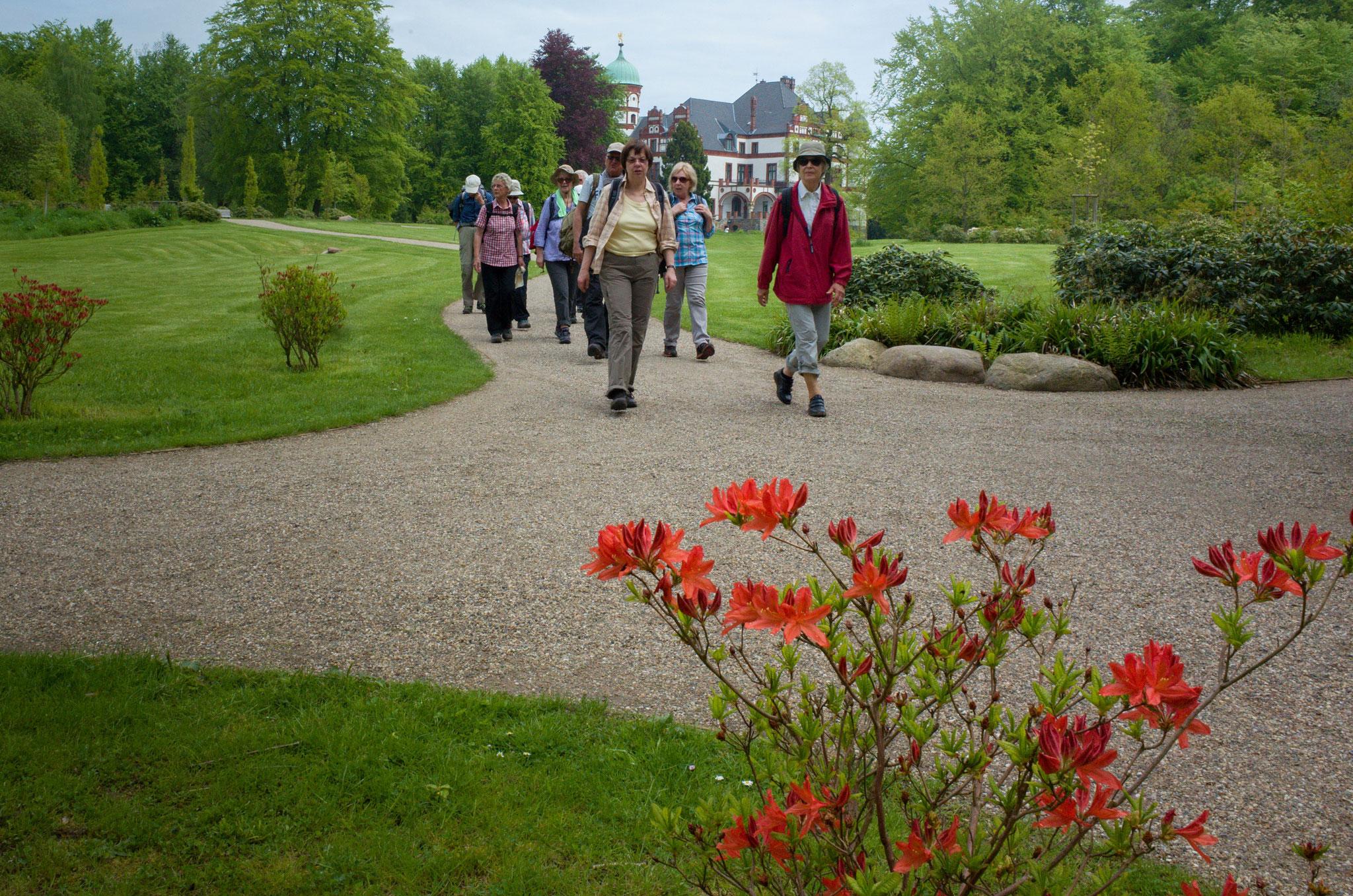 Entspannter Teil der Wanderung durch den Schlosspark Wiligrad am 17.05.2017