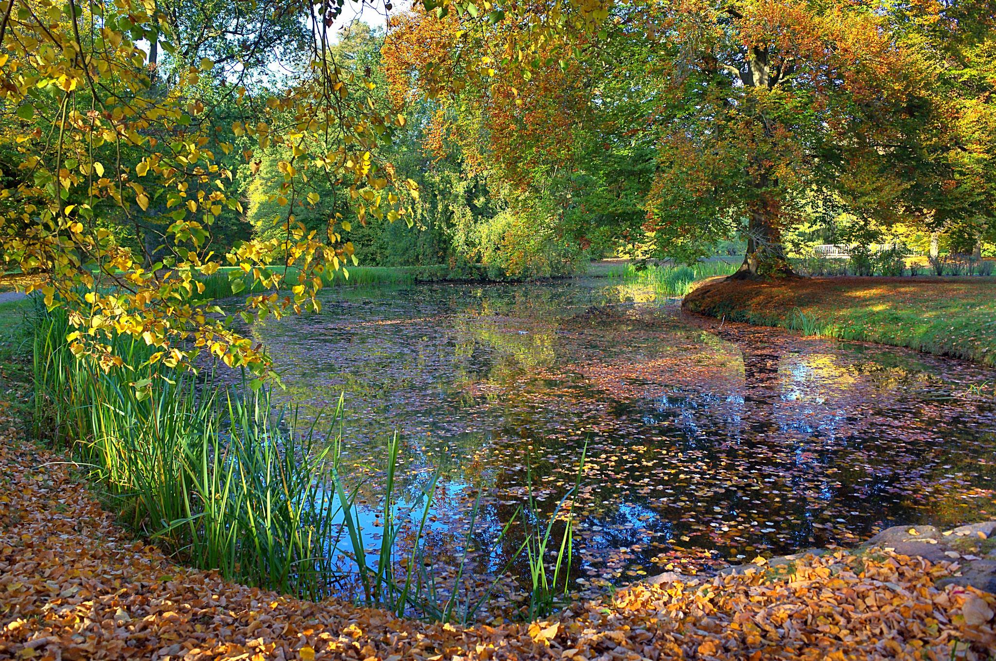 Schlosspark Ludwigslust am 17.10. 2018