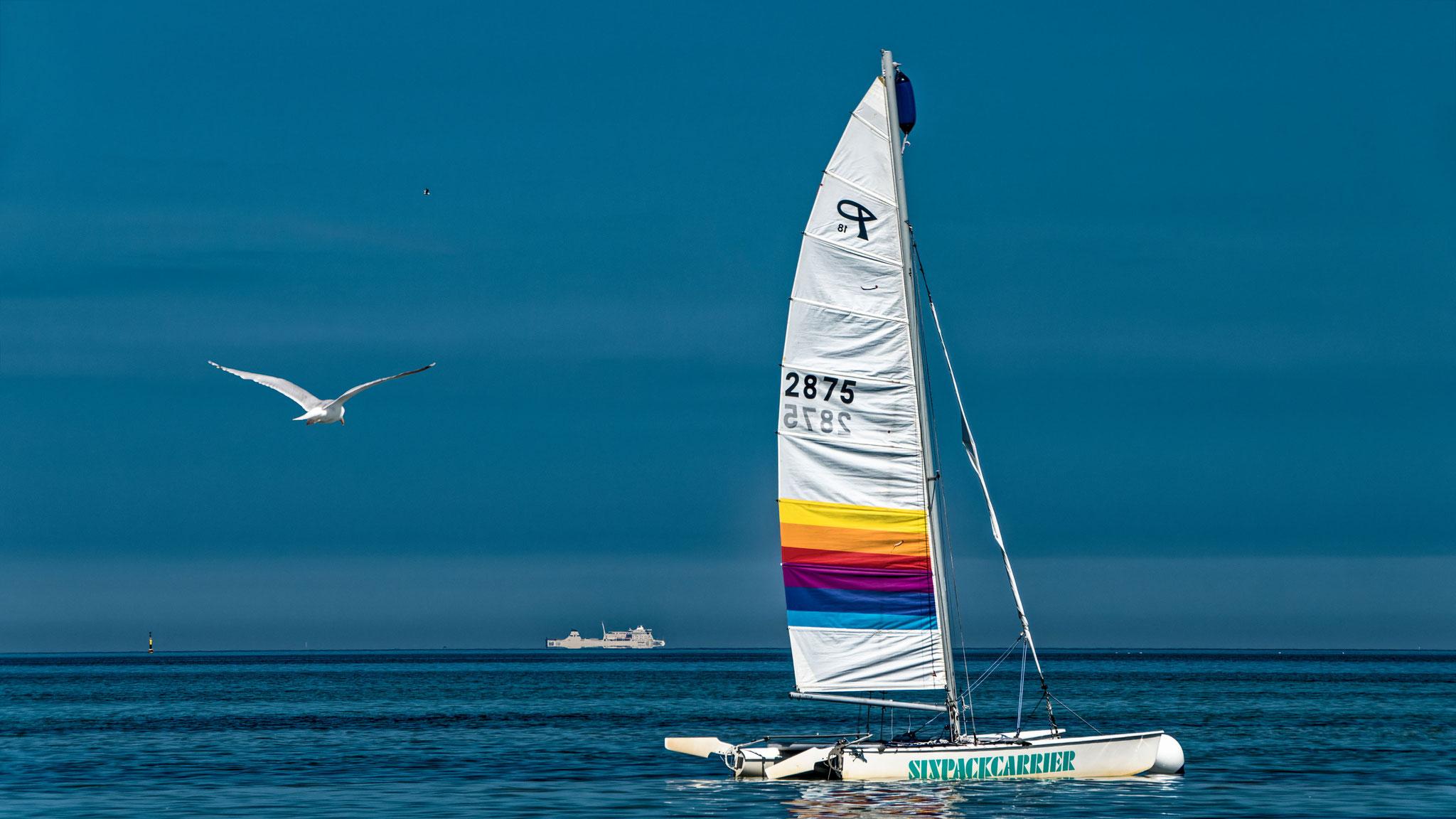 Weiße Segel vor der Insel Poel, Reiner Liefeldt, 9.6.2021