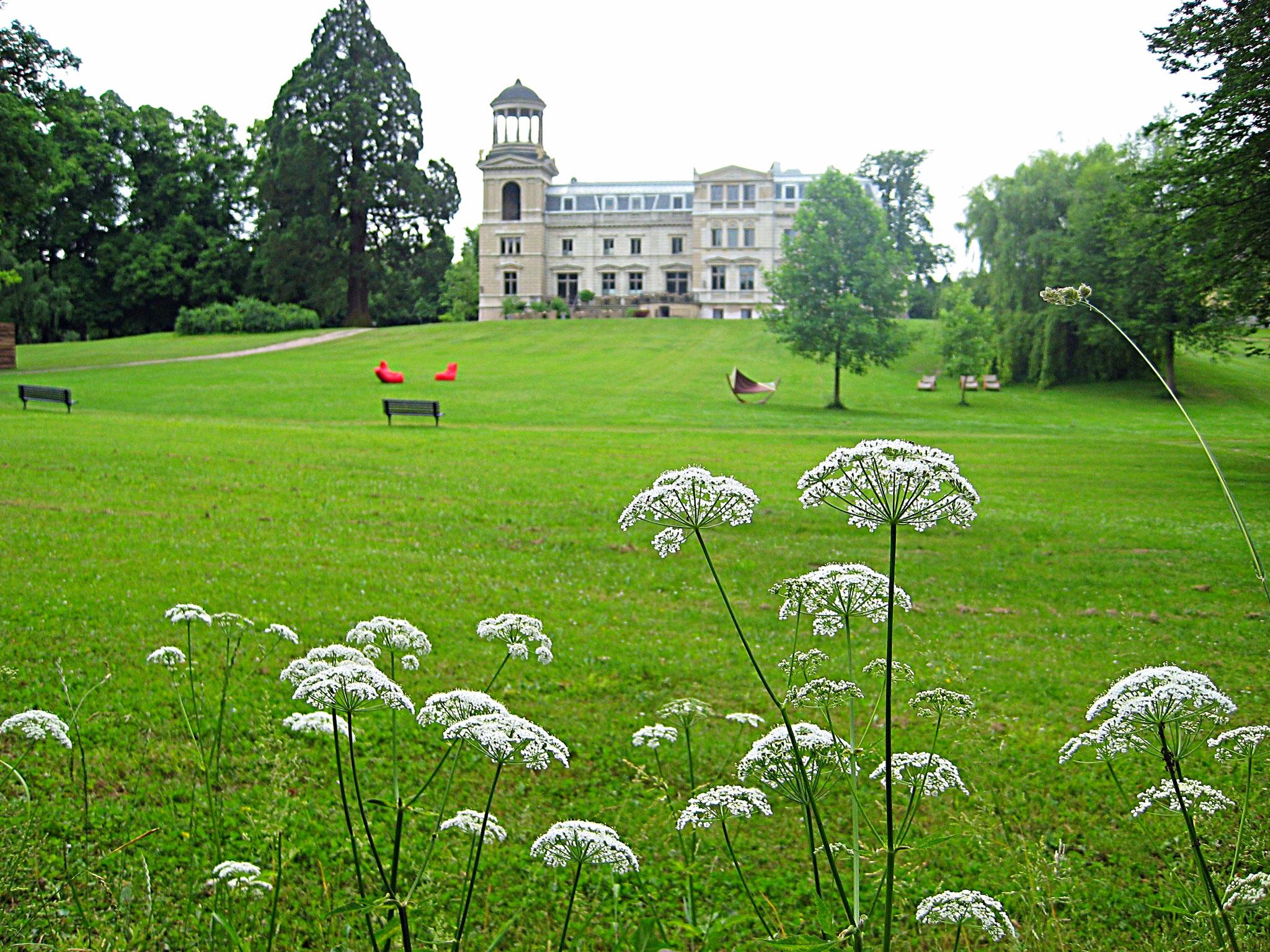 Schlosspark Kaarz am 08.06.2016