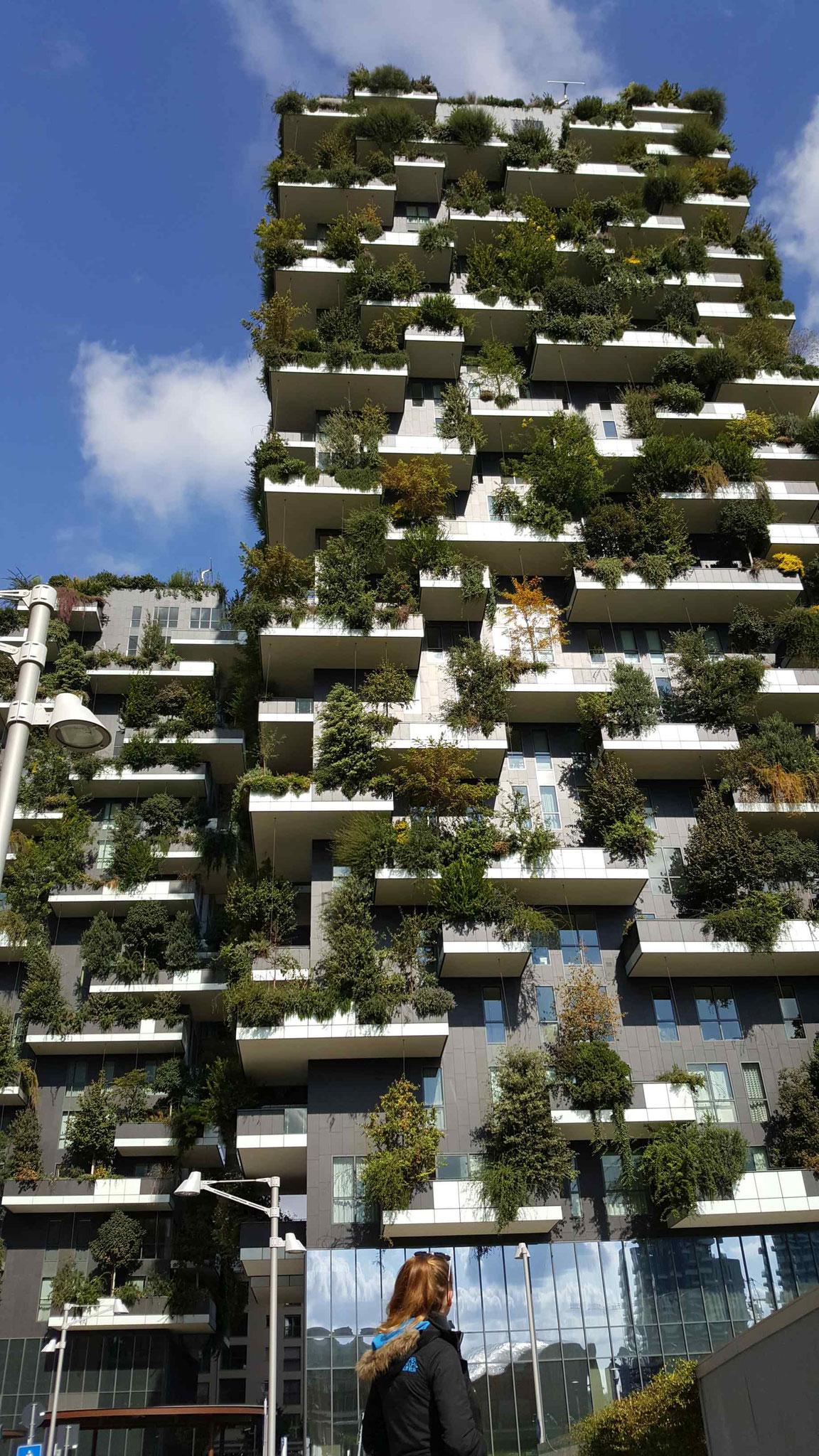 Vorblid Mailand: Bosco Vertikale
