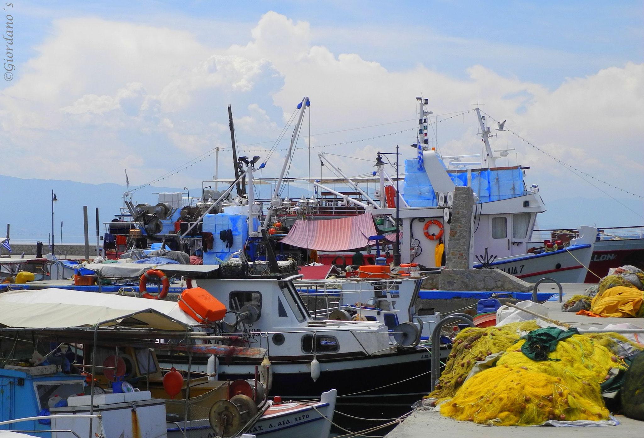 Farbenfroher Fischerhafen in Loutra Edipsou