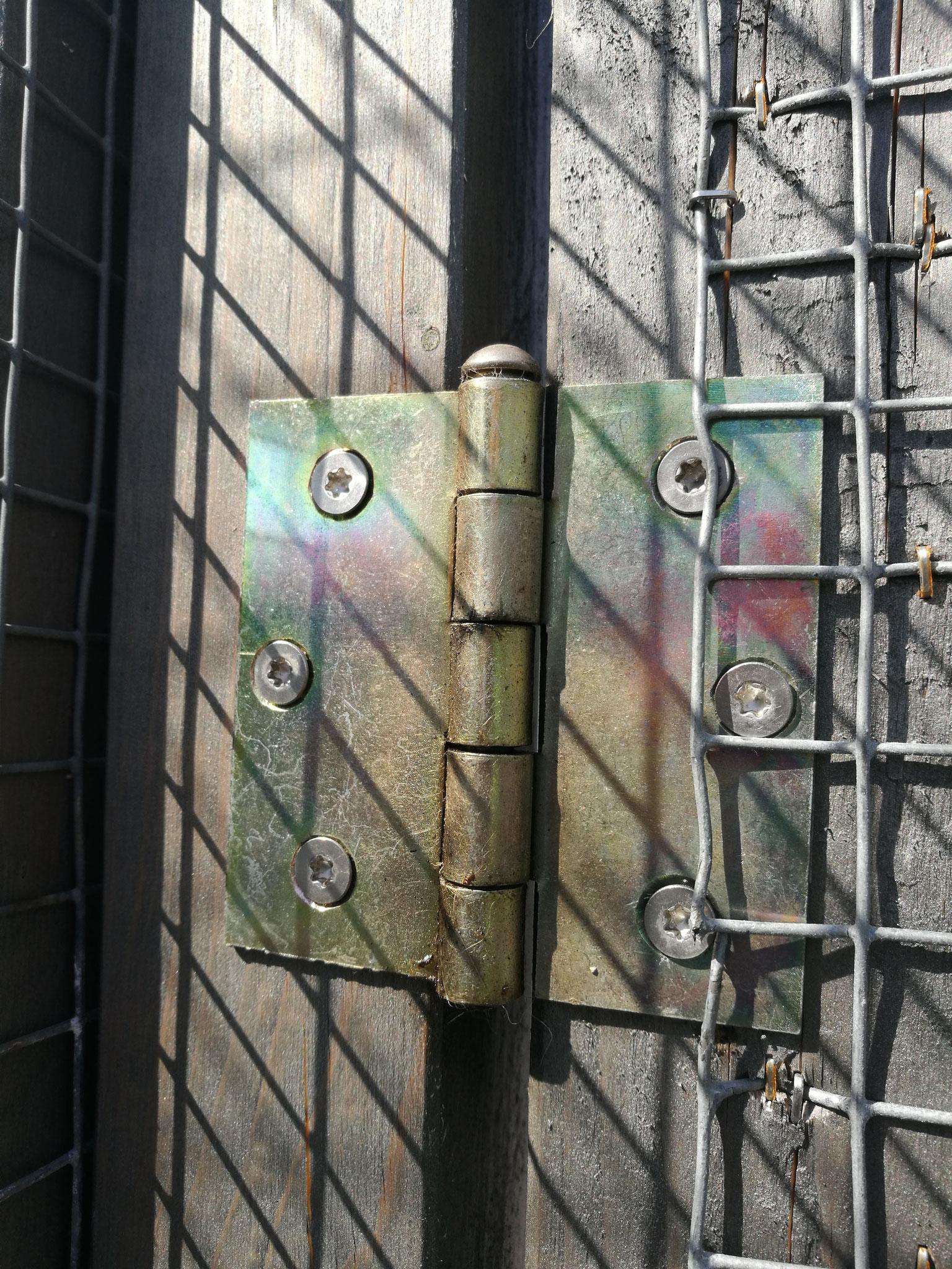 Tür- Scharnier