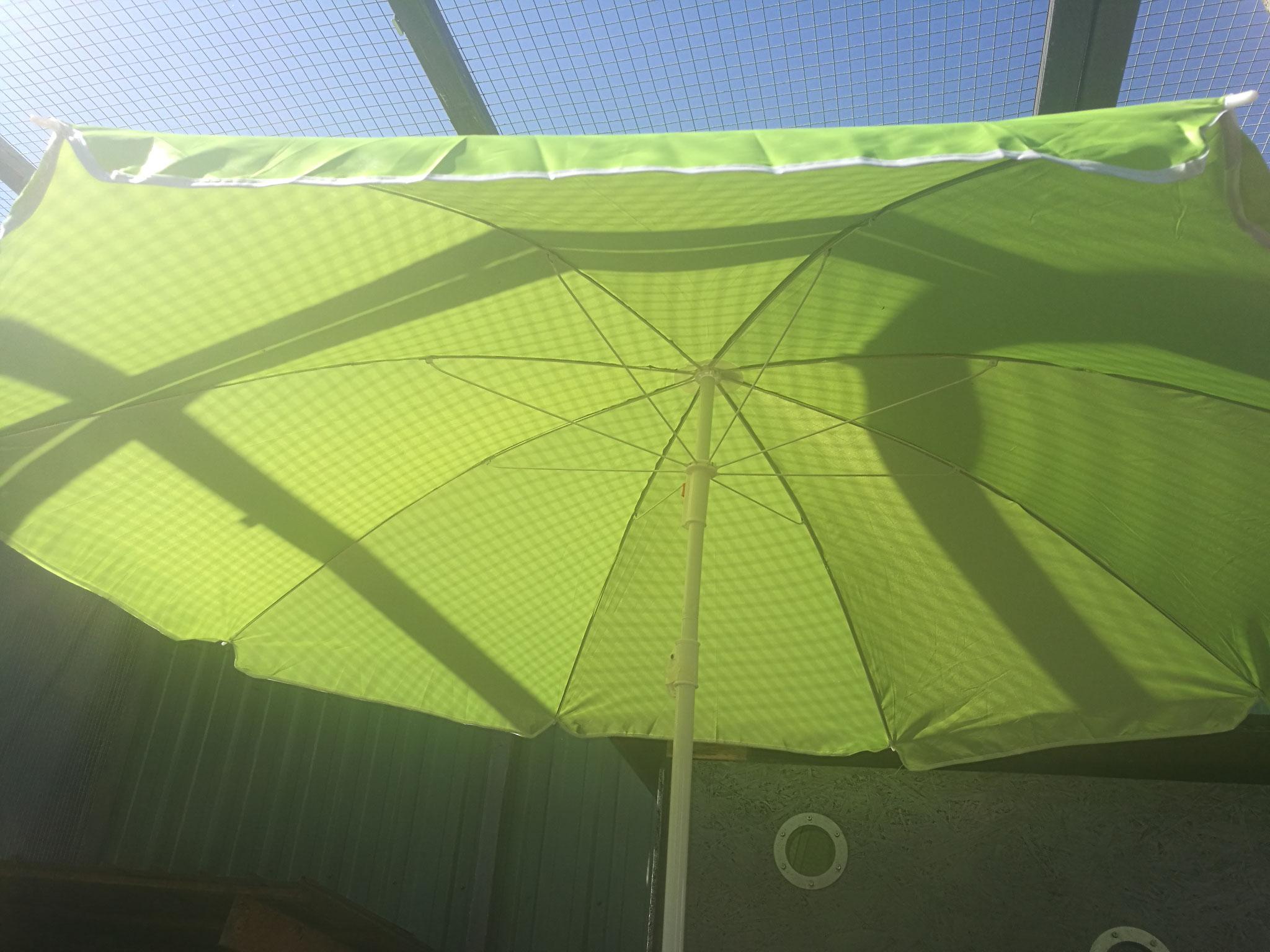 Sonnenschutz ist im Sommer unverzichtbar