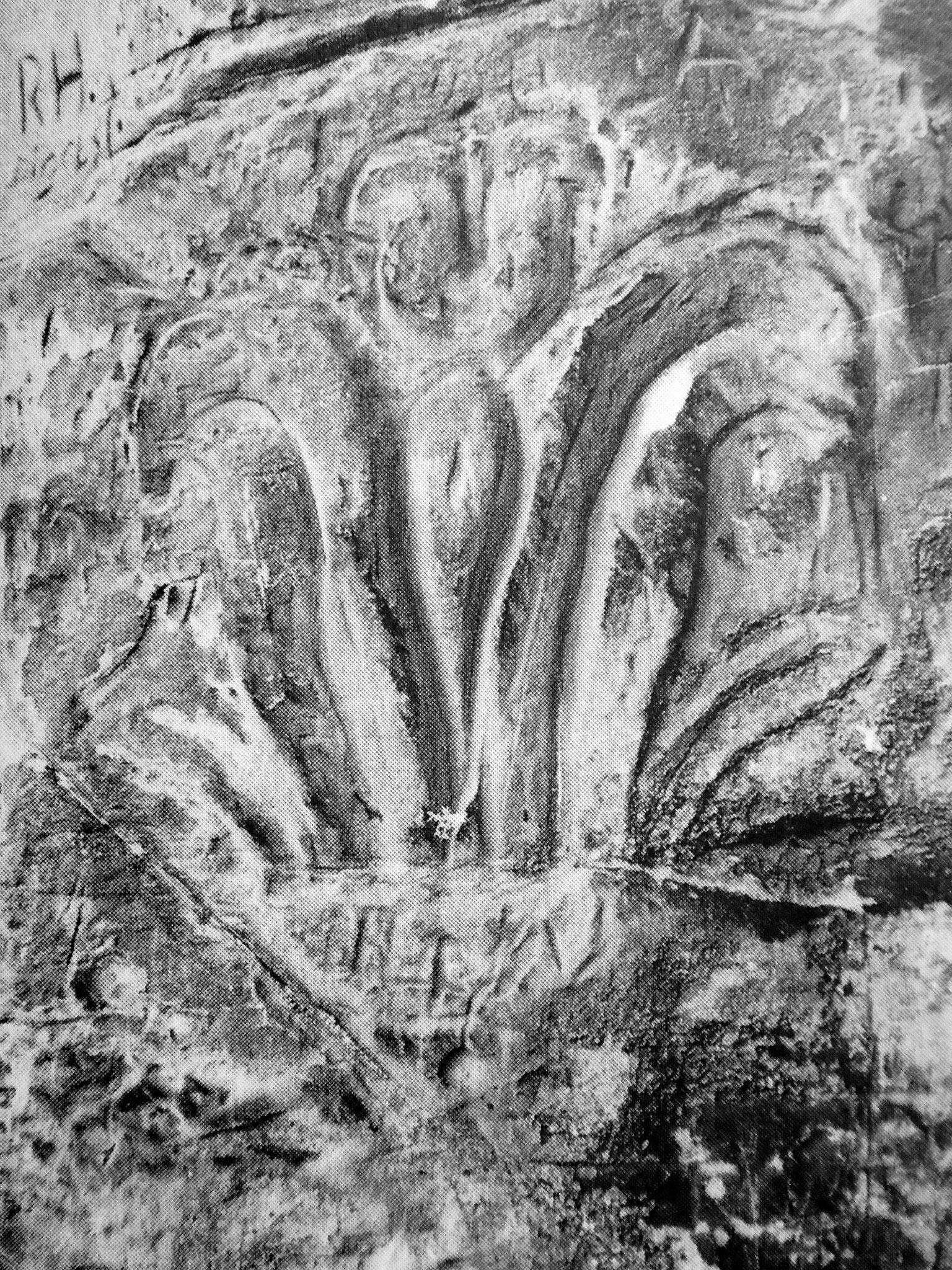 6. Die Lilie an der Nordseite des Regensteines
