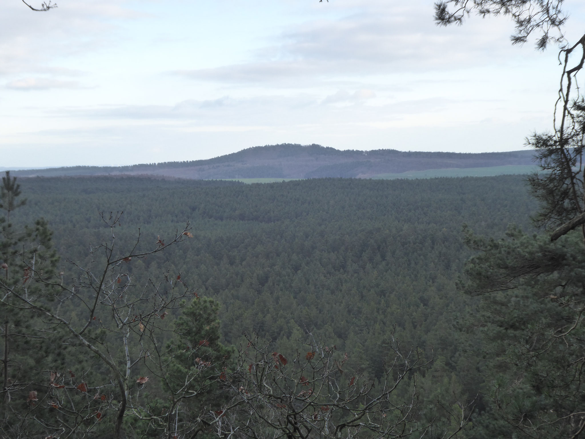 Am Horizont ist der Hoppelberg zu sehen.
