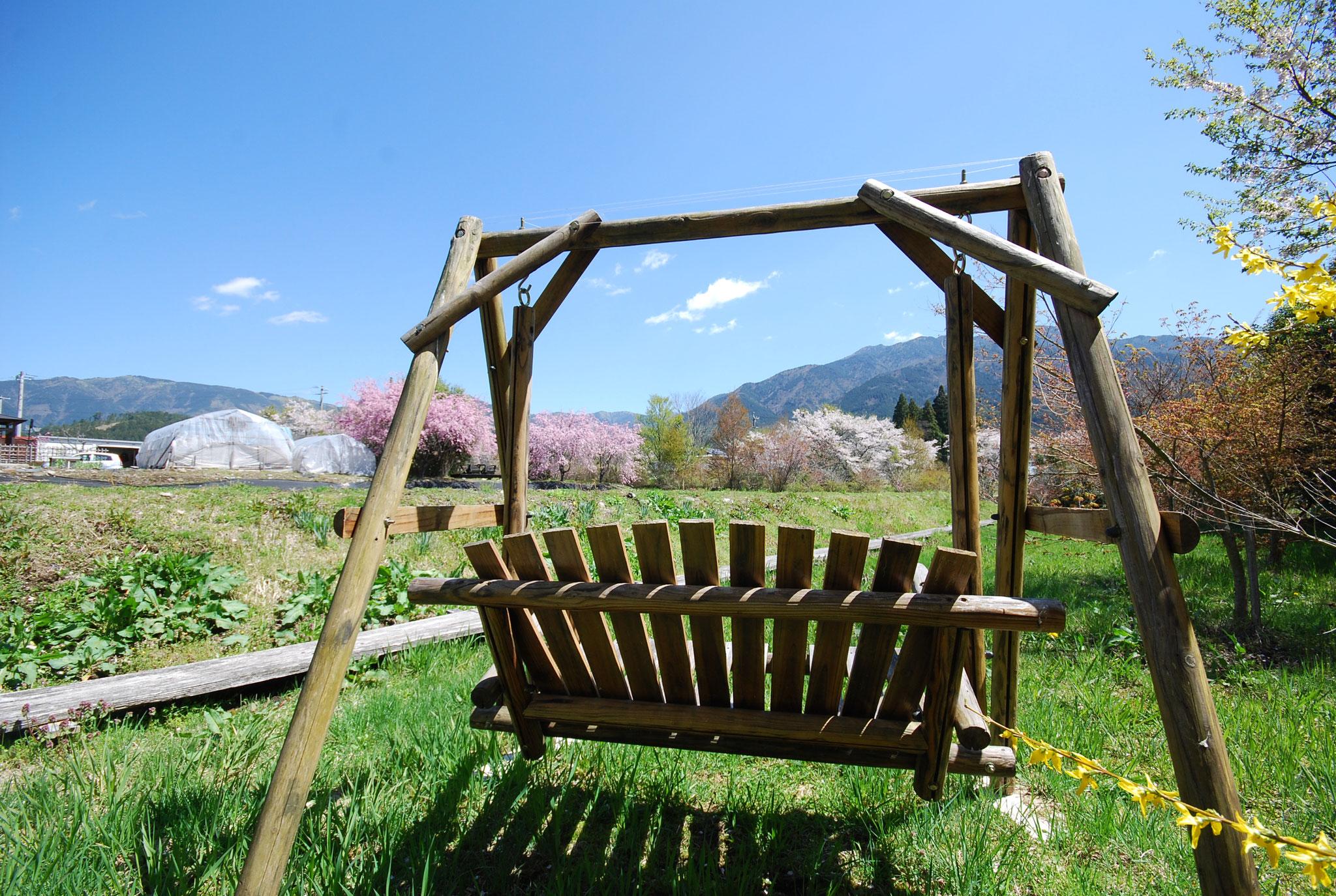 ブランコから見る春の敷地