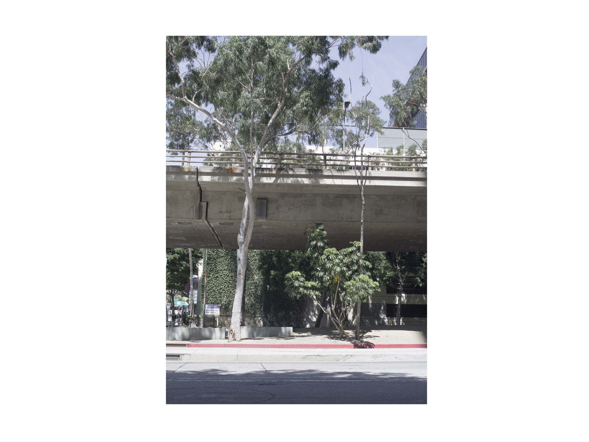 LA Under the bridge 1