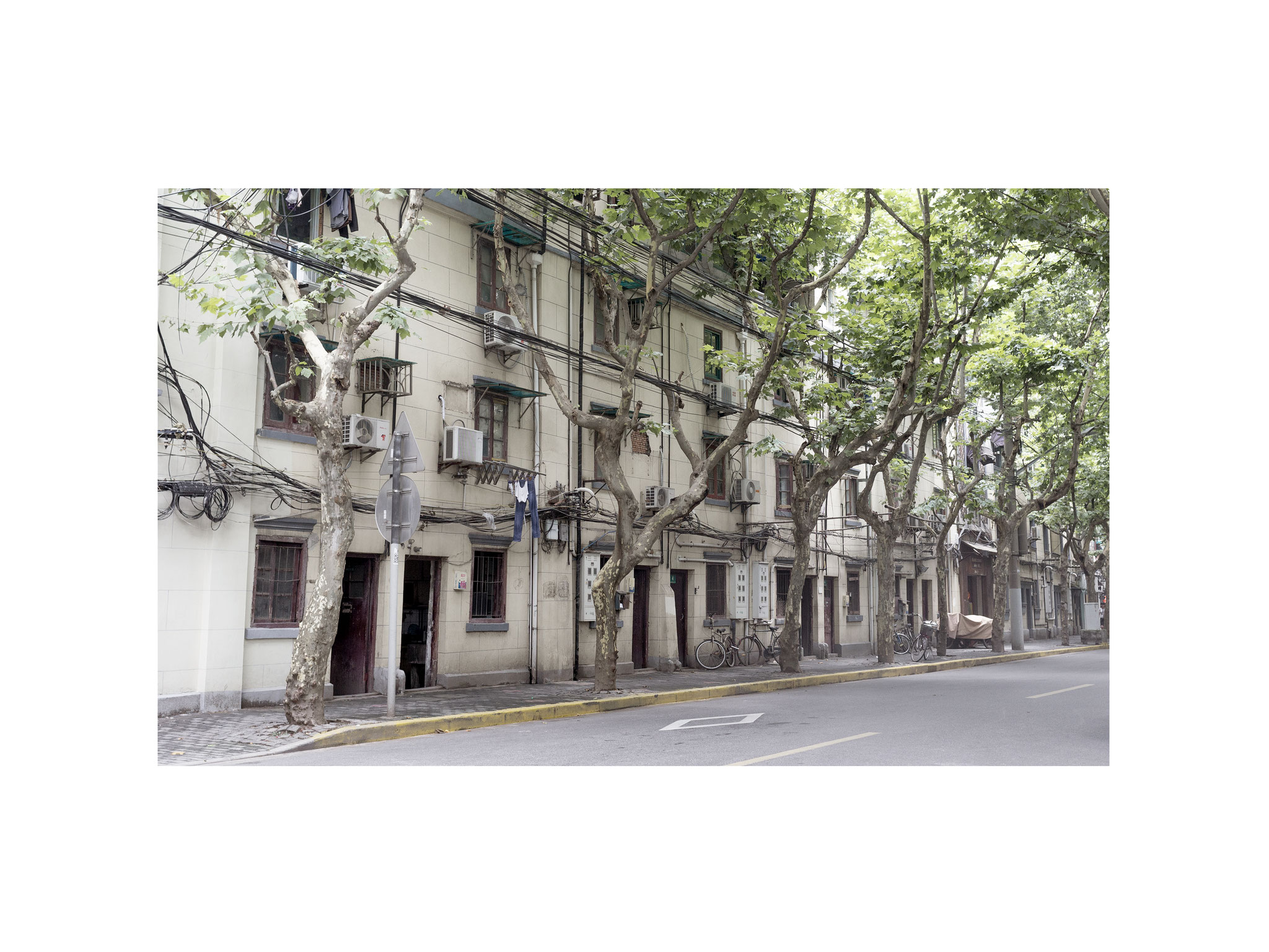 Shanghai street 2