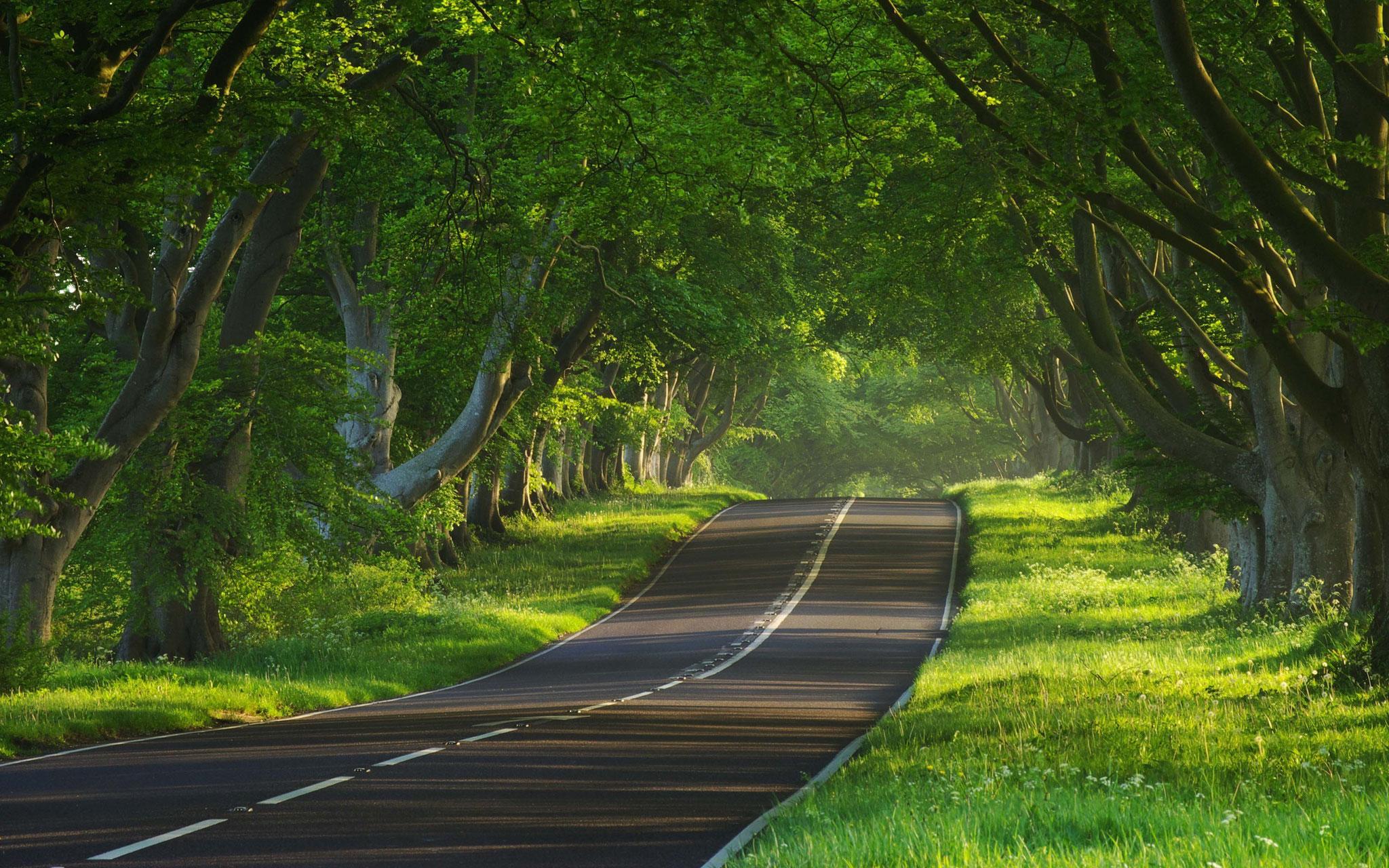 Road to hell or heaven oder beides zusammen?