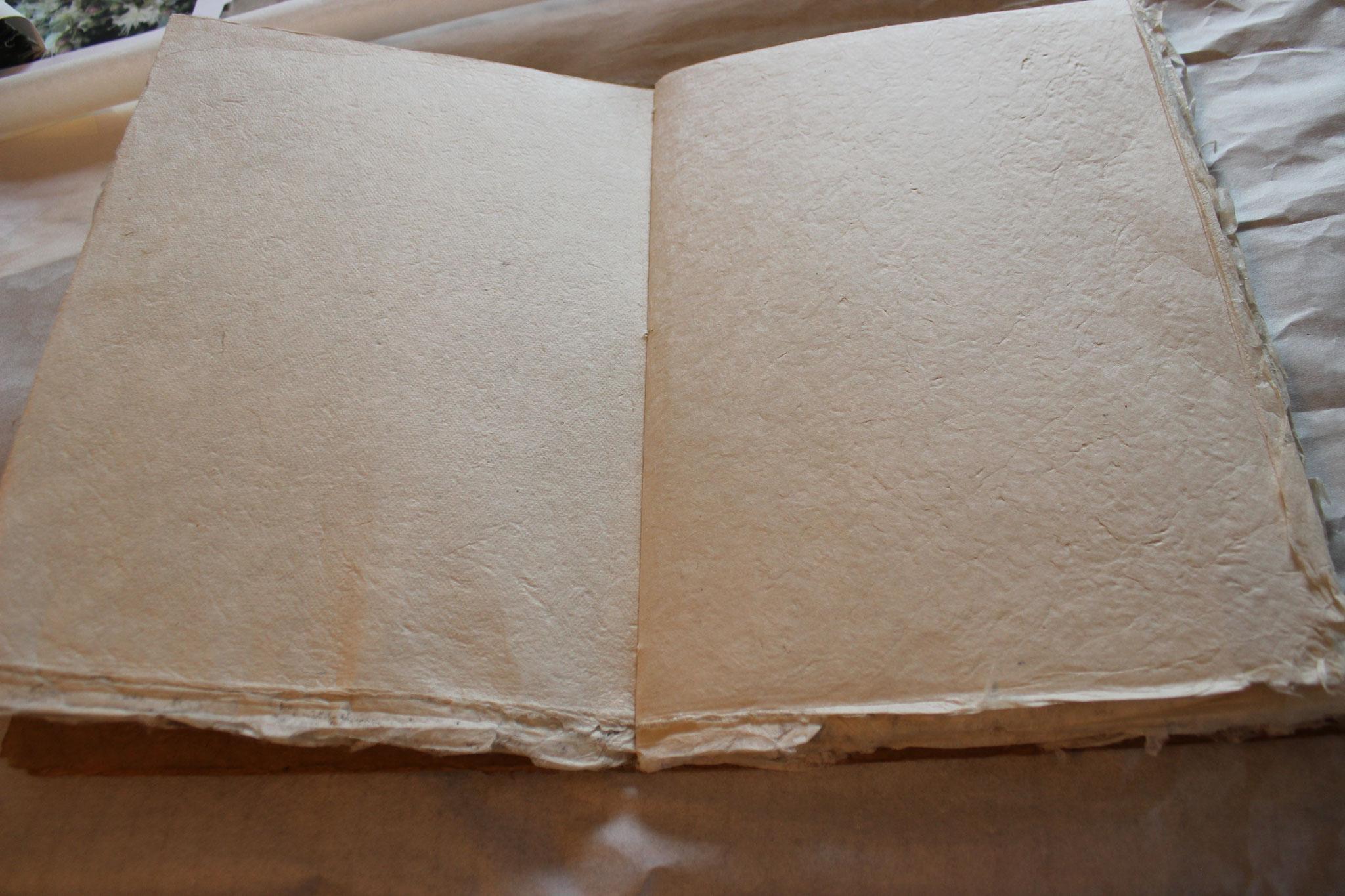 Gästebuch: aus handgeschöpftem Naturfaserpapier