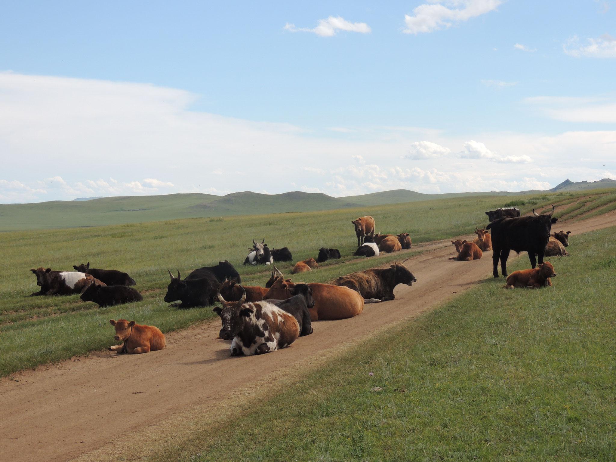 Mongolische Straße
