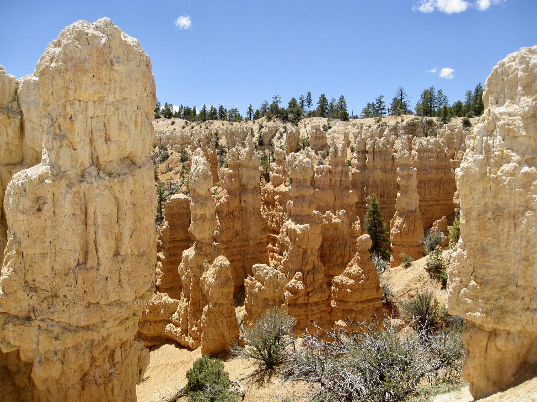 Navajo Loop Trail Bryce Canyon National Park