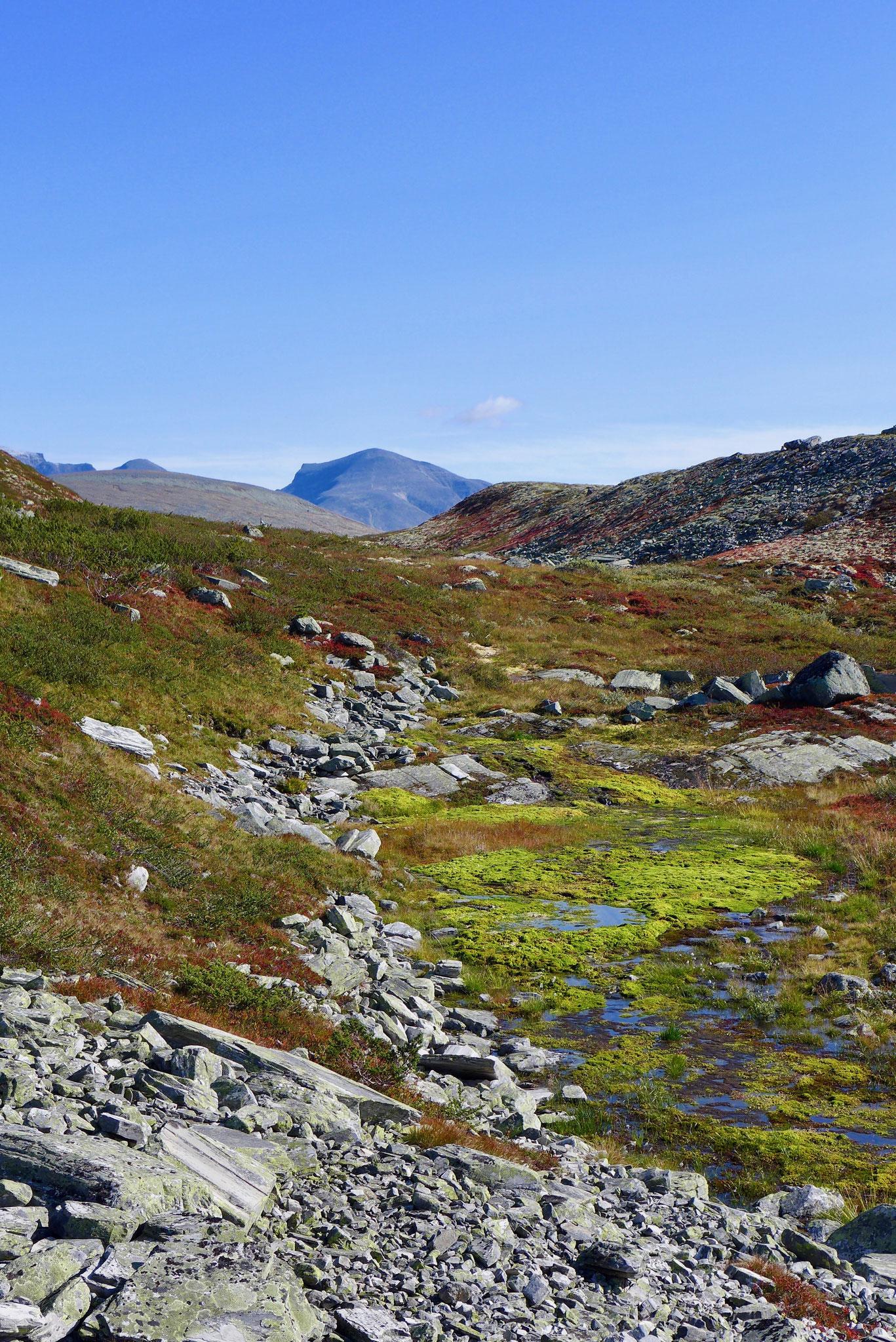 Und gleich auf dem ersten Kilometer wird man von genialen Farben begrüßt.