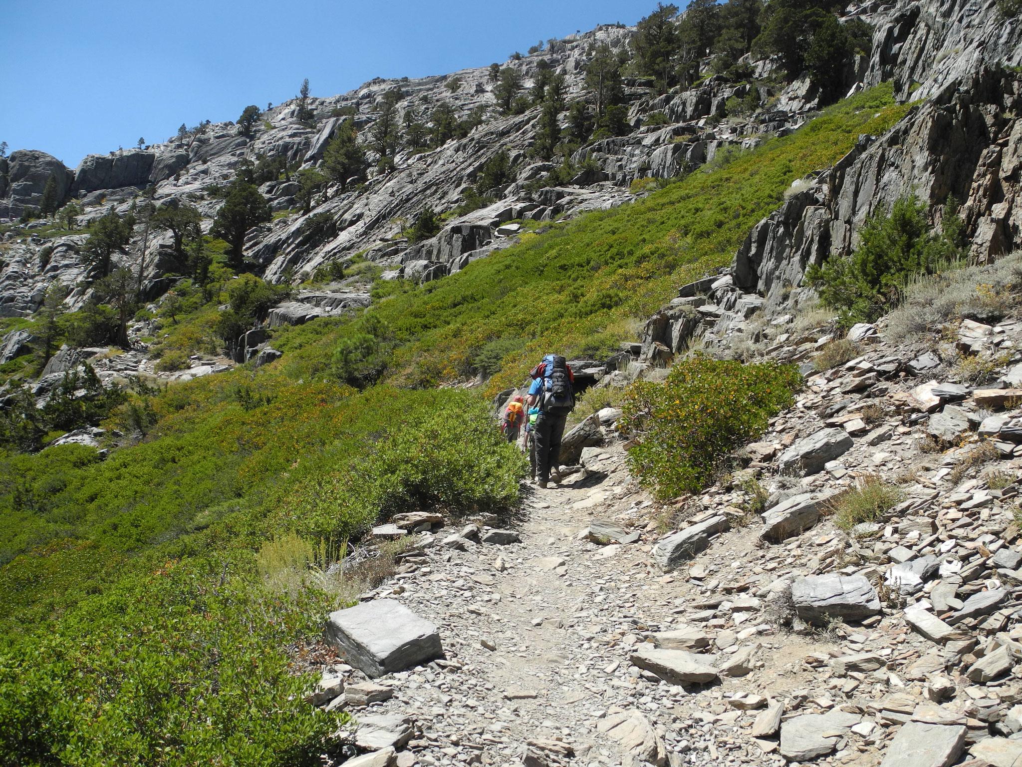 Nach einem eher flachen ersten Kilometer ging es dann schnell den Berg hoch.