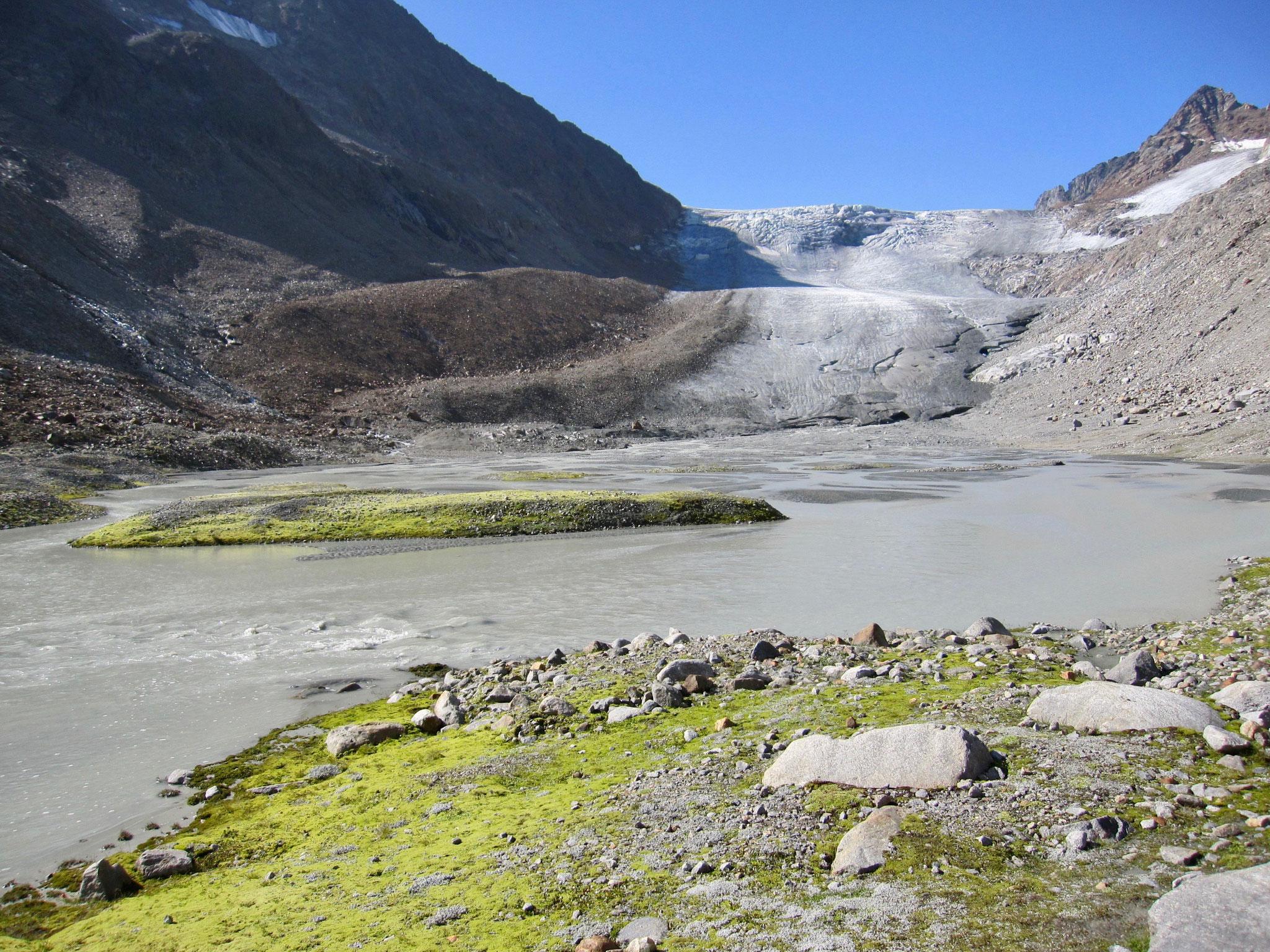 Ein beindruckender Blick auf den Alpeiner Ferner
