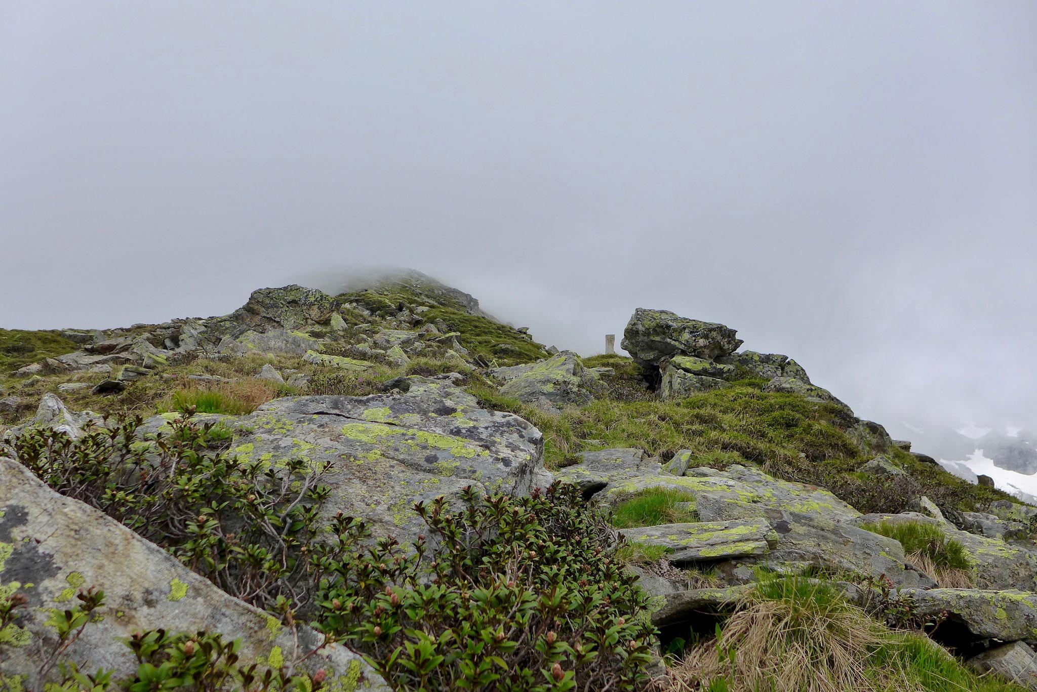 Kurz vor dem Gipfel stoppten wir um nicht den steilen Grad im Nebel bzw. den Wolken meistern zu müssen.
