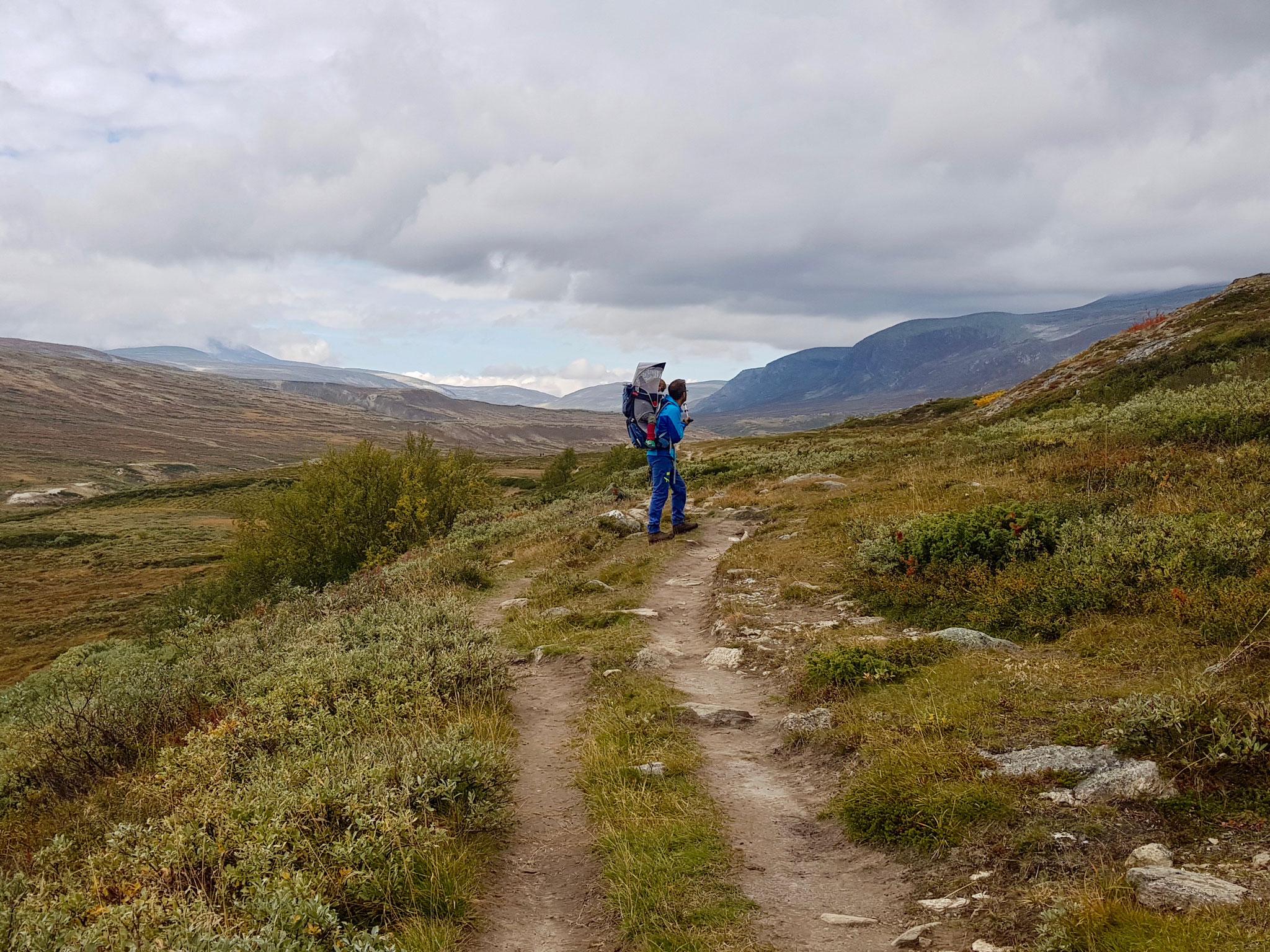 Auf dem  Plateau angekommen wanderten wir in Richtung DNT Reinheimen weiter.