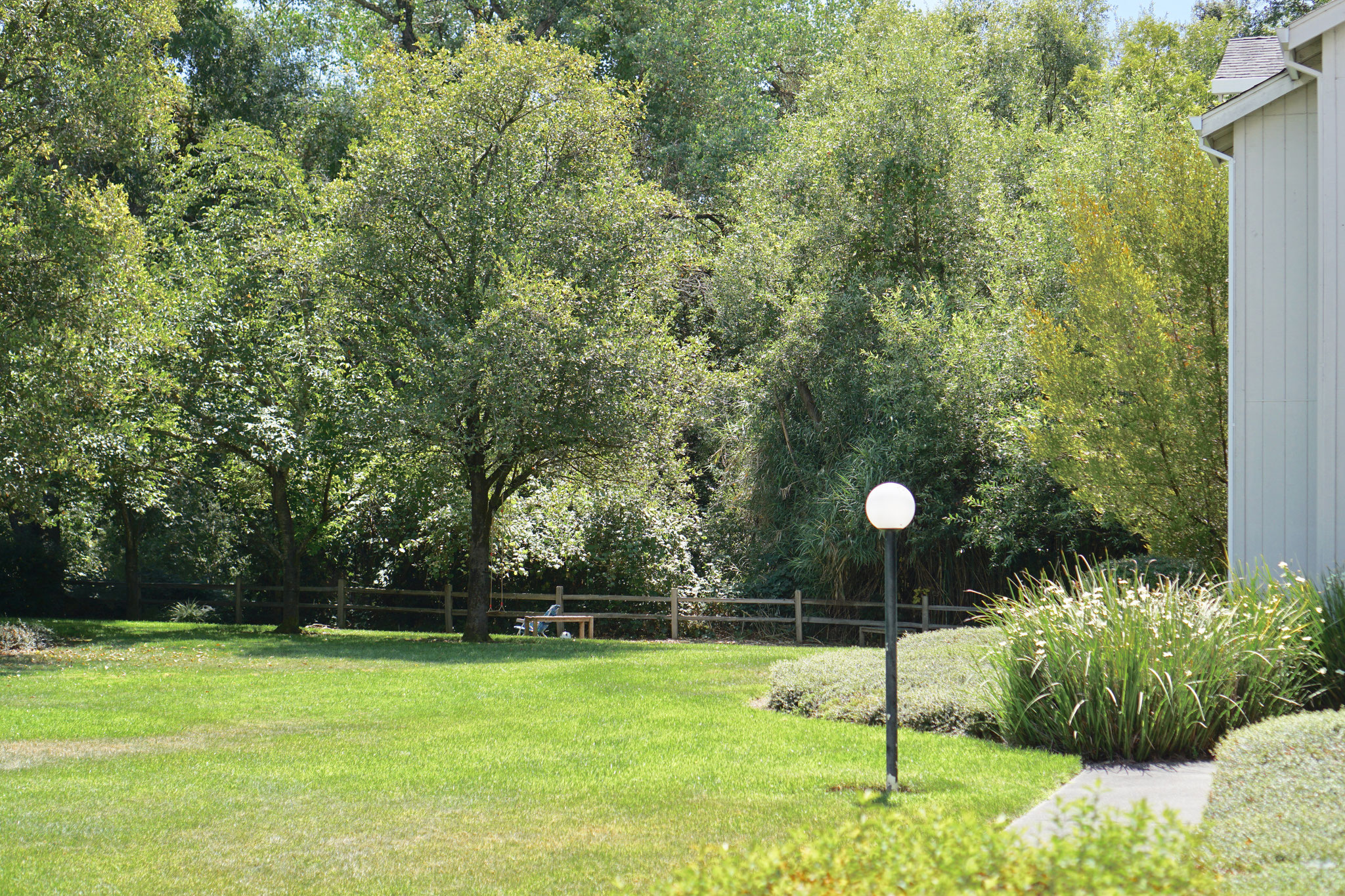 quiet and serene green space near the creek at the back of the apartment complex