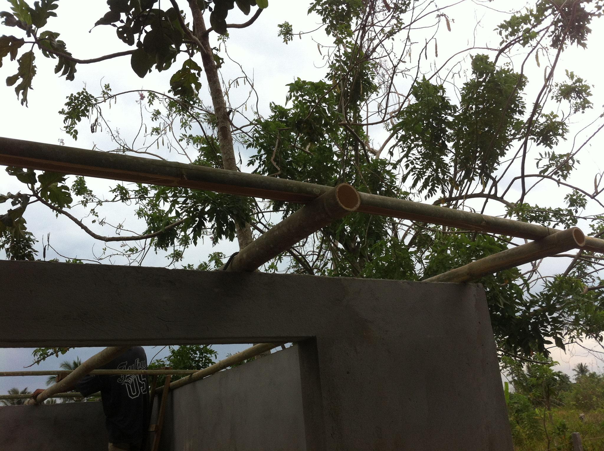 Pultdach mit Bambus