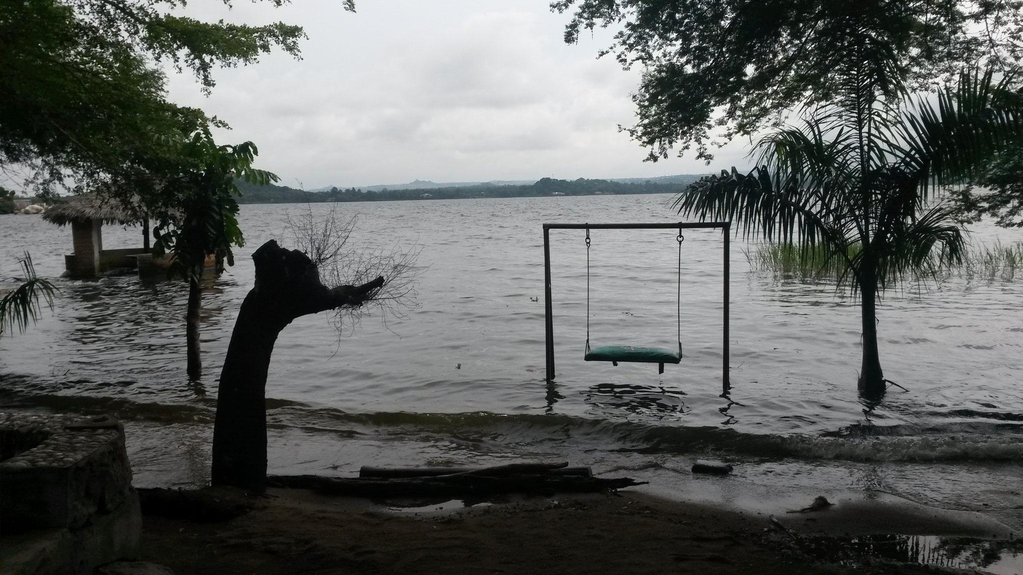 Schauckel am Lake Victoria