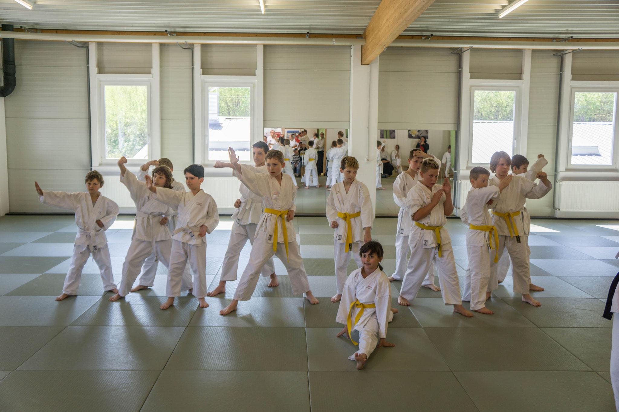 Karate-Kinder von Kleinlützel und Laufen