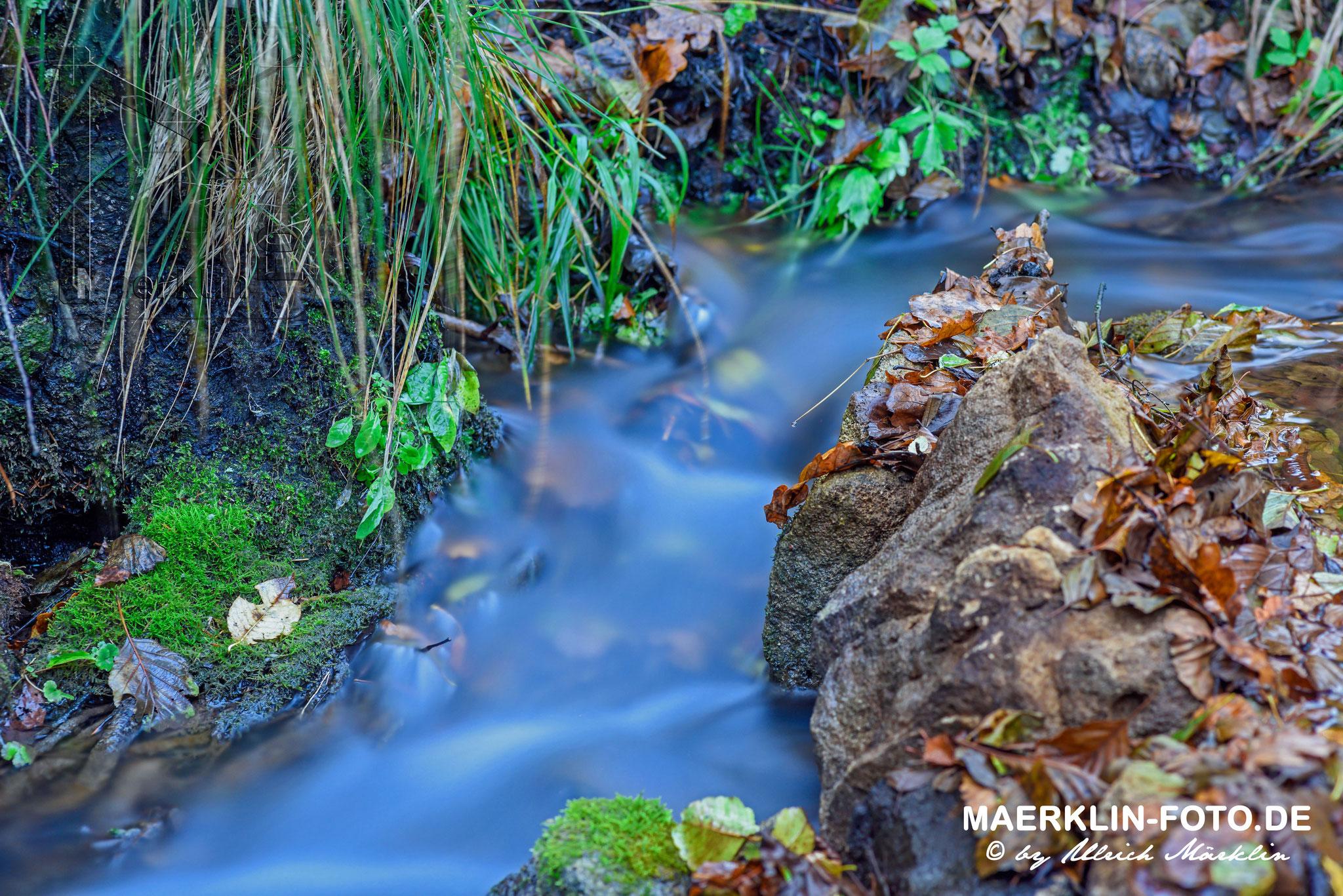 fließendes Wasser und Herbstlaub mit Aufhellblitz, Naturpark Schönbuch