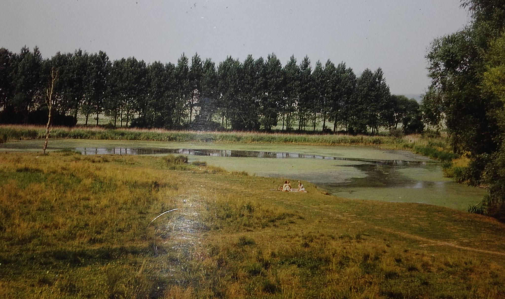 Ein Picknick mit lärmenden Fröschen die man bis nach Wangenheim hören konnte.