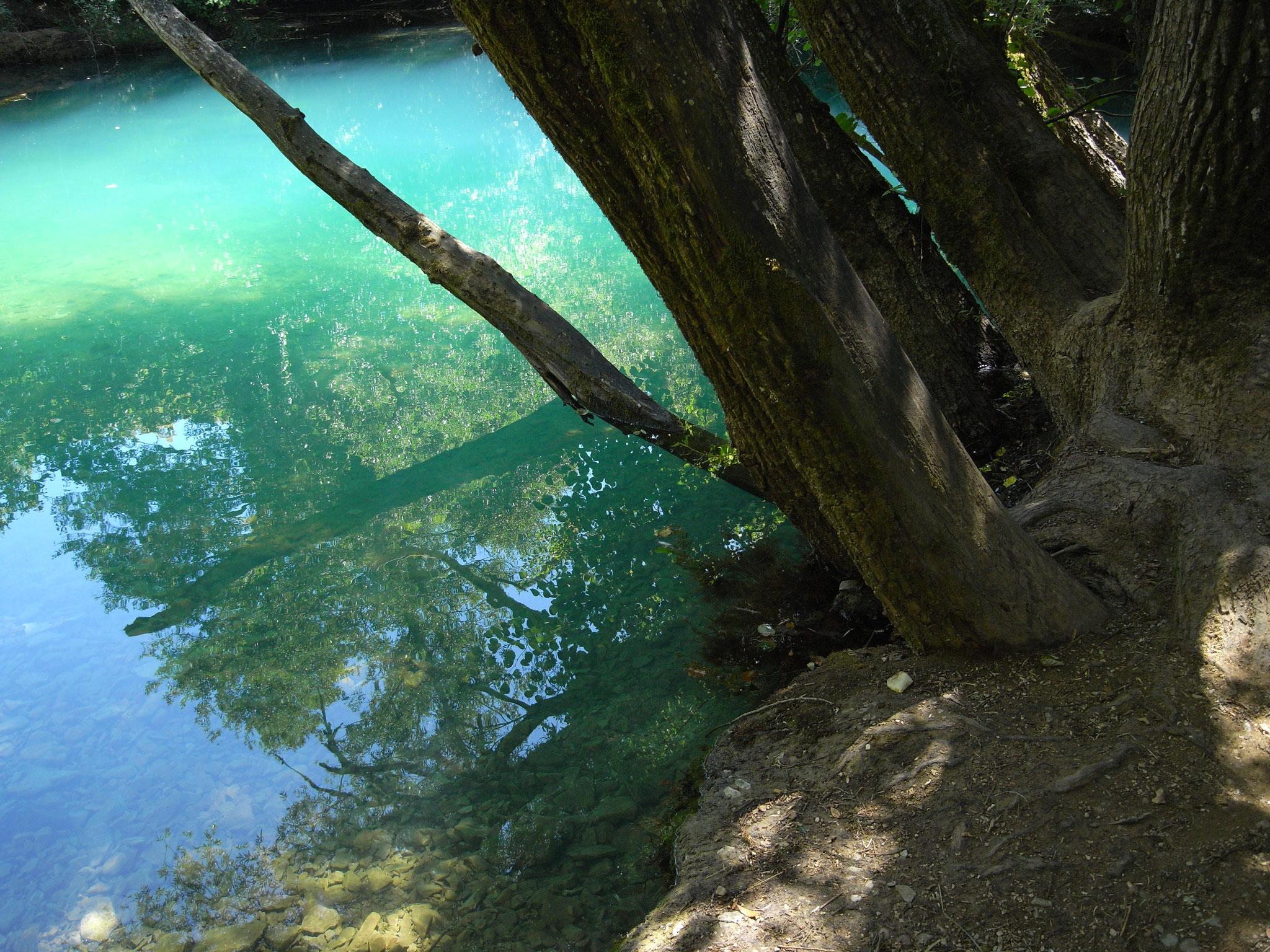gîte Clos des muriers Saint-Cirq Lapopie Vallée du Lot