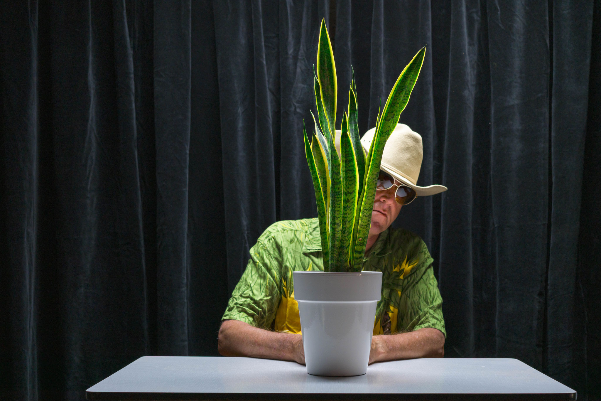 Me and my Sansevieria