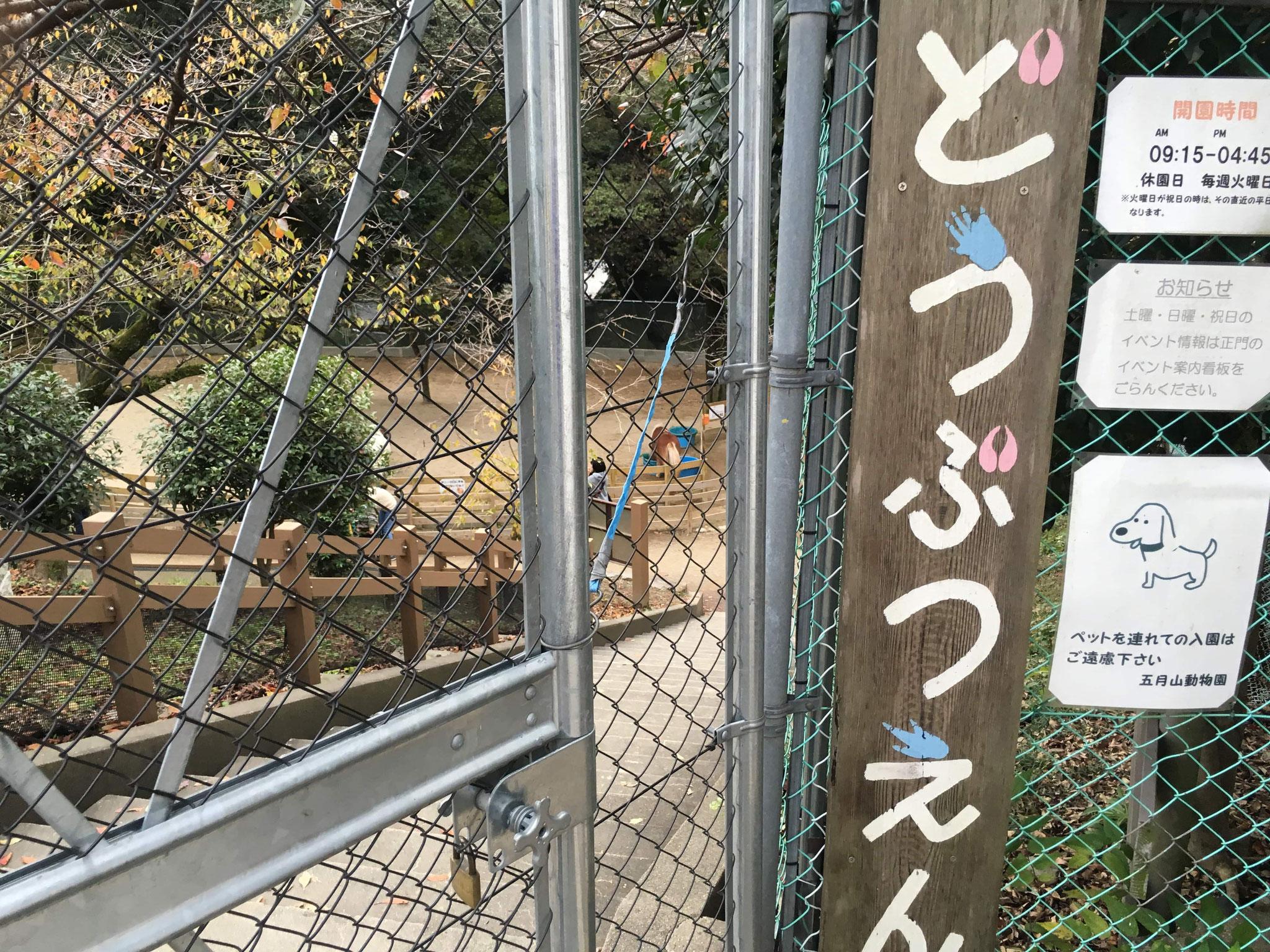 五月山動物園(入園無料)
