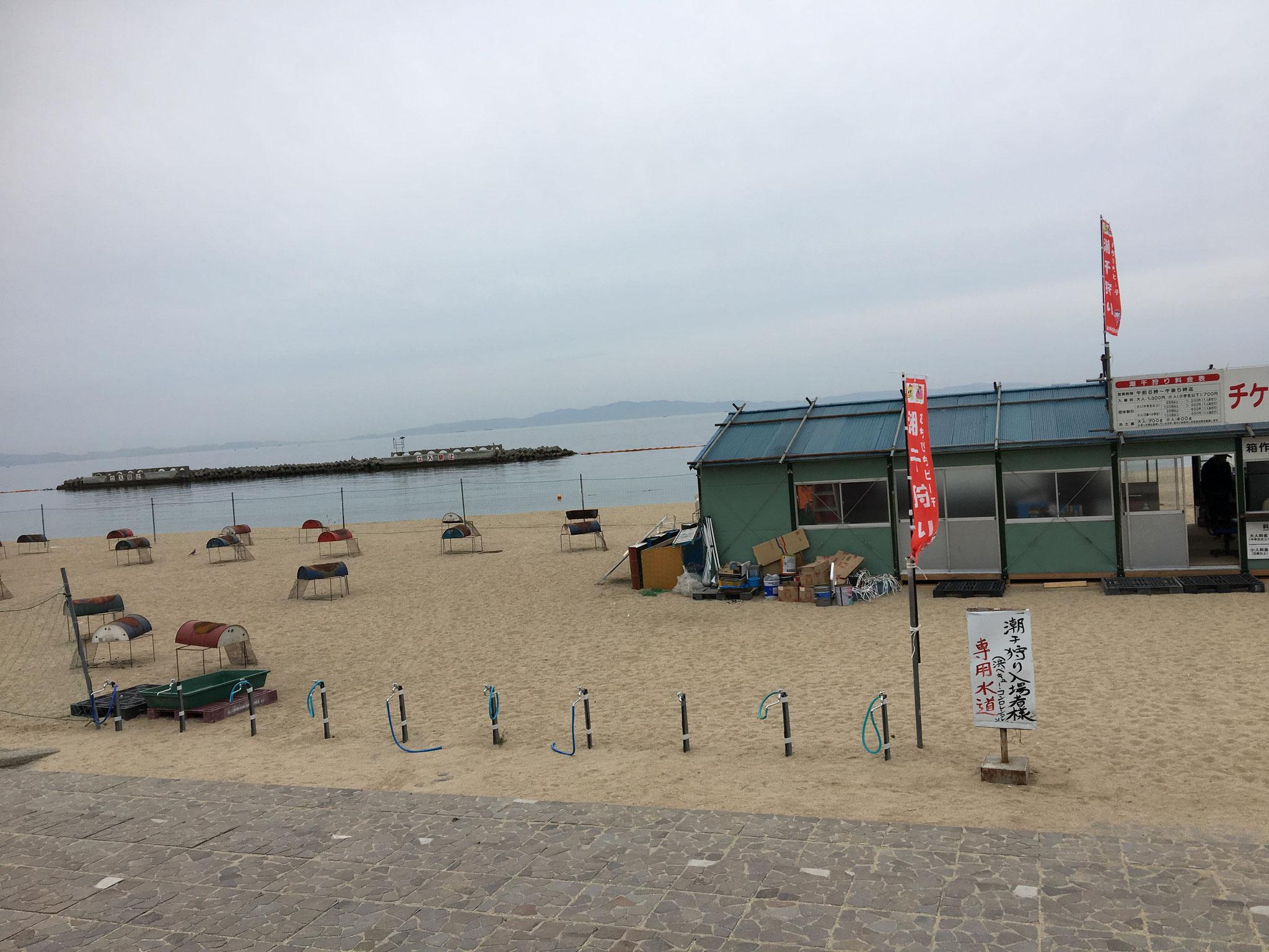 潮干狩りシーズン時のビーチ