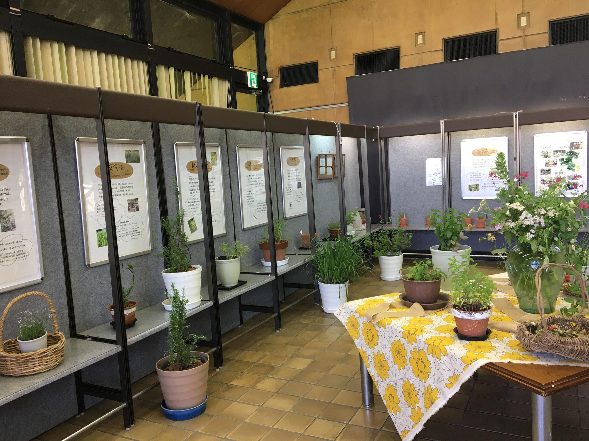 花と緑の相談所