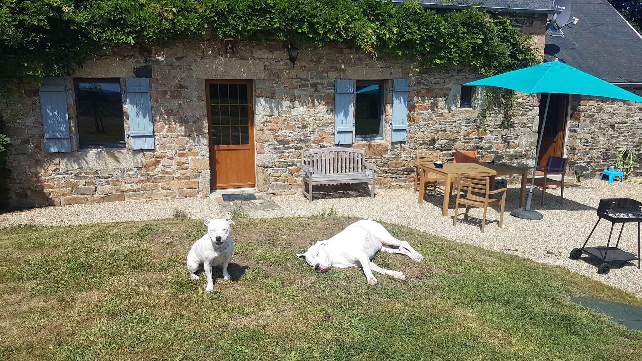 après le barbecue il faut se détendre au soleil