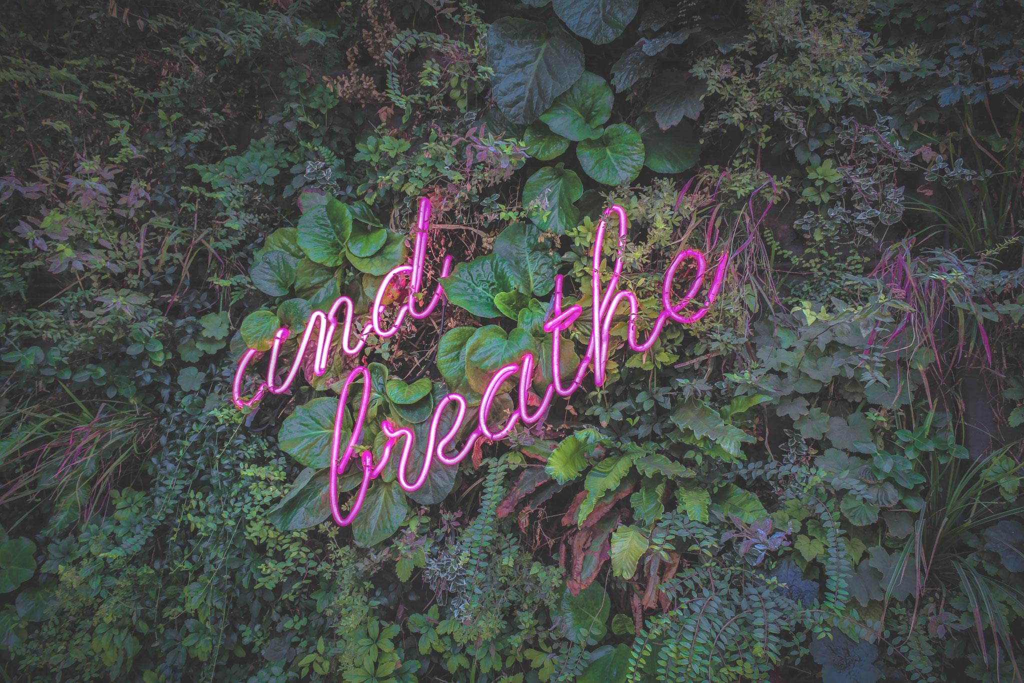 Gezielte Atemübungen helfen, verstärkt Sauerstoff aufzunehmen, den Stoffwechsel anzukurbeln und Reinigungsprozesse zu fördern. Sie regulieren und entspannen Geist und Körper und unterstützen unsere Selbstheilungskraft.