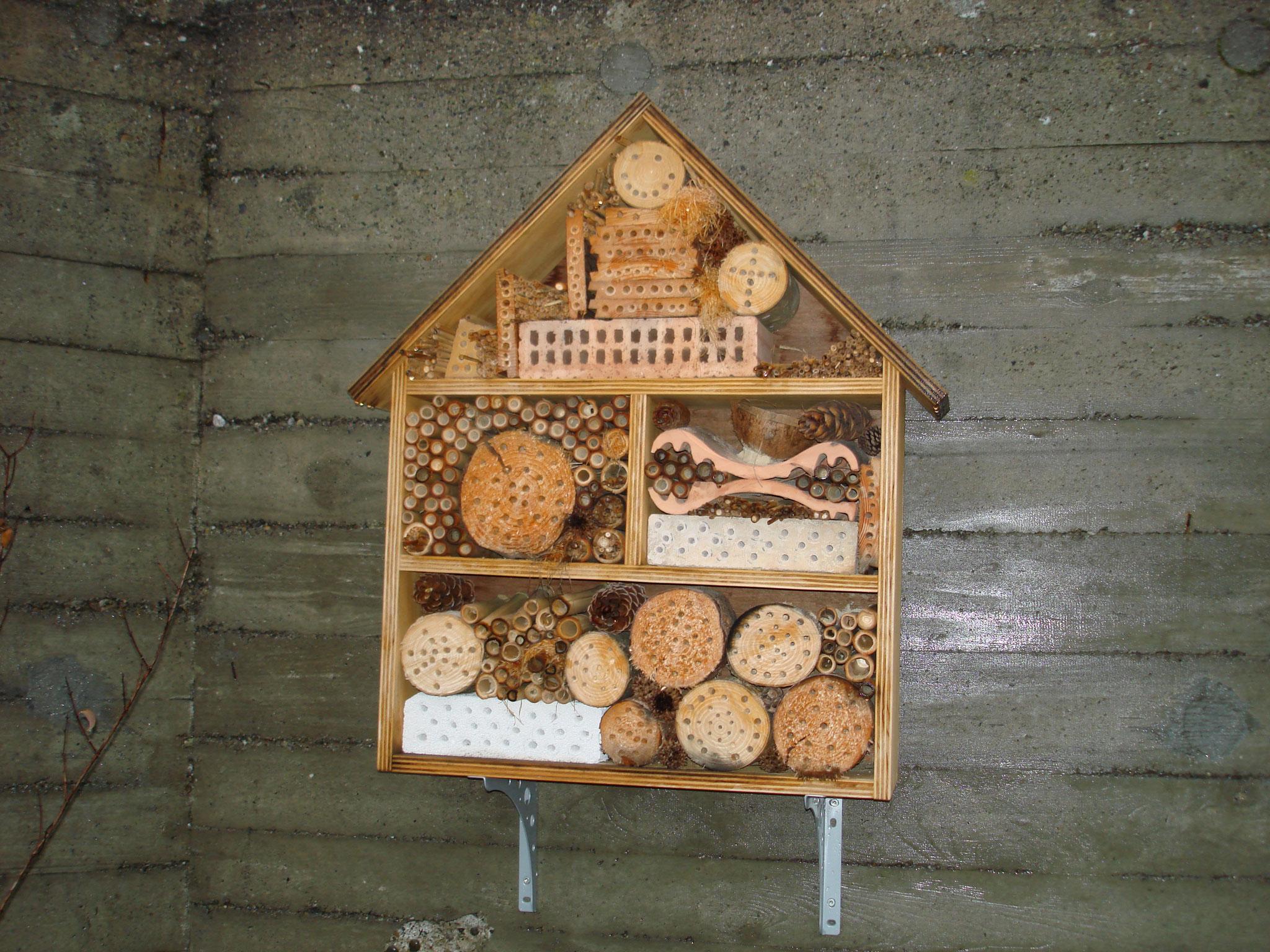 Bau Bienenhaus