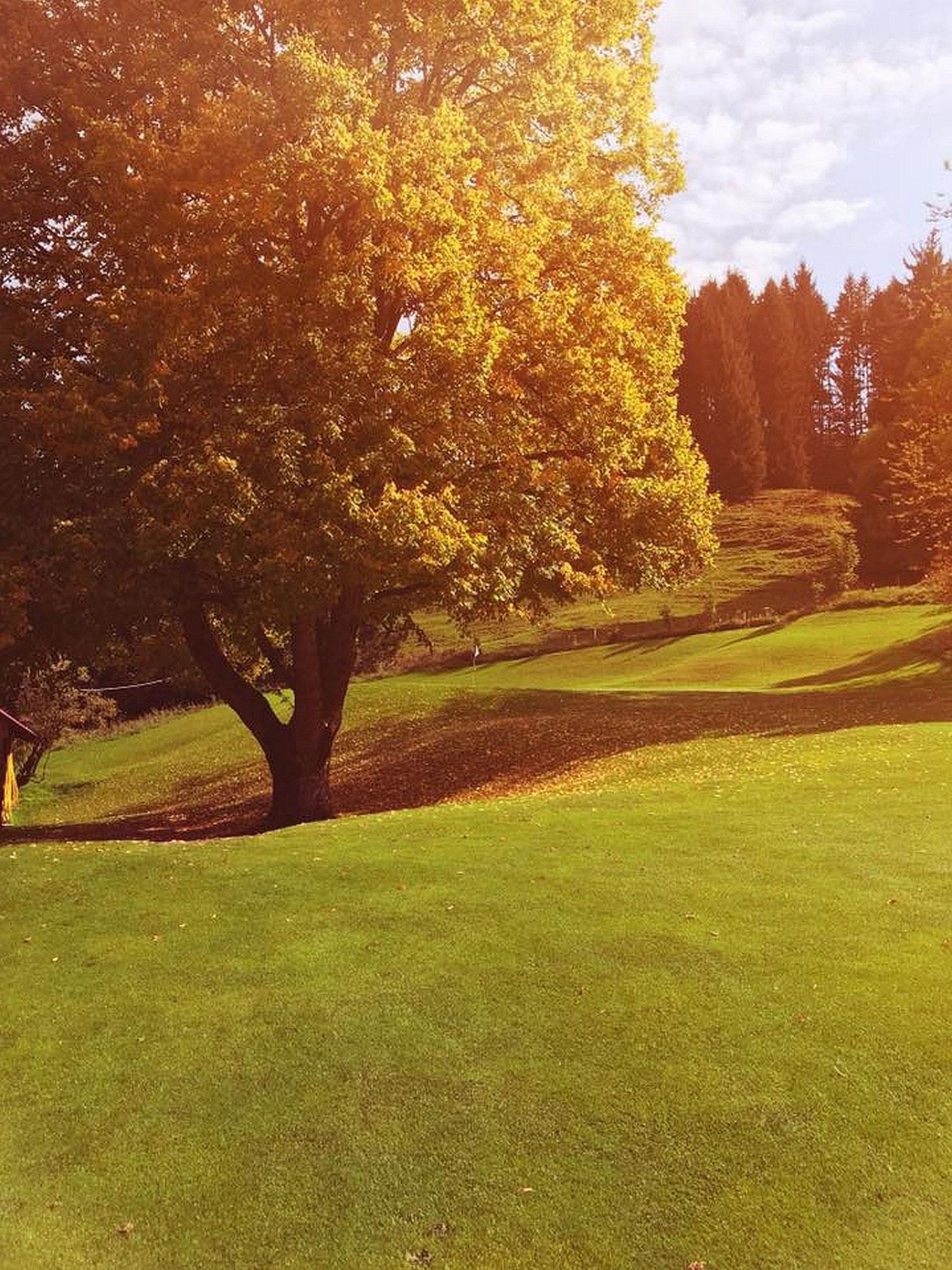 Golfclub Oberstaufen-Steibis/Foto: Gregor Lubina