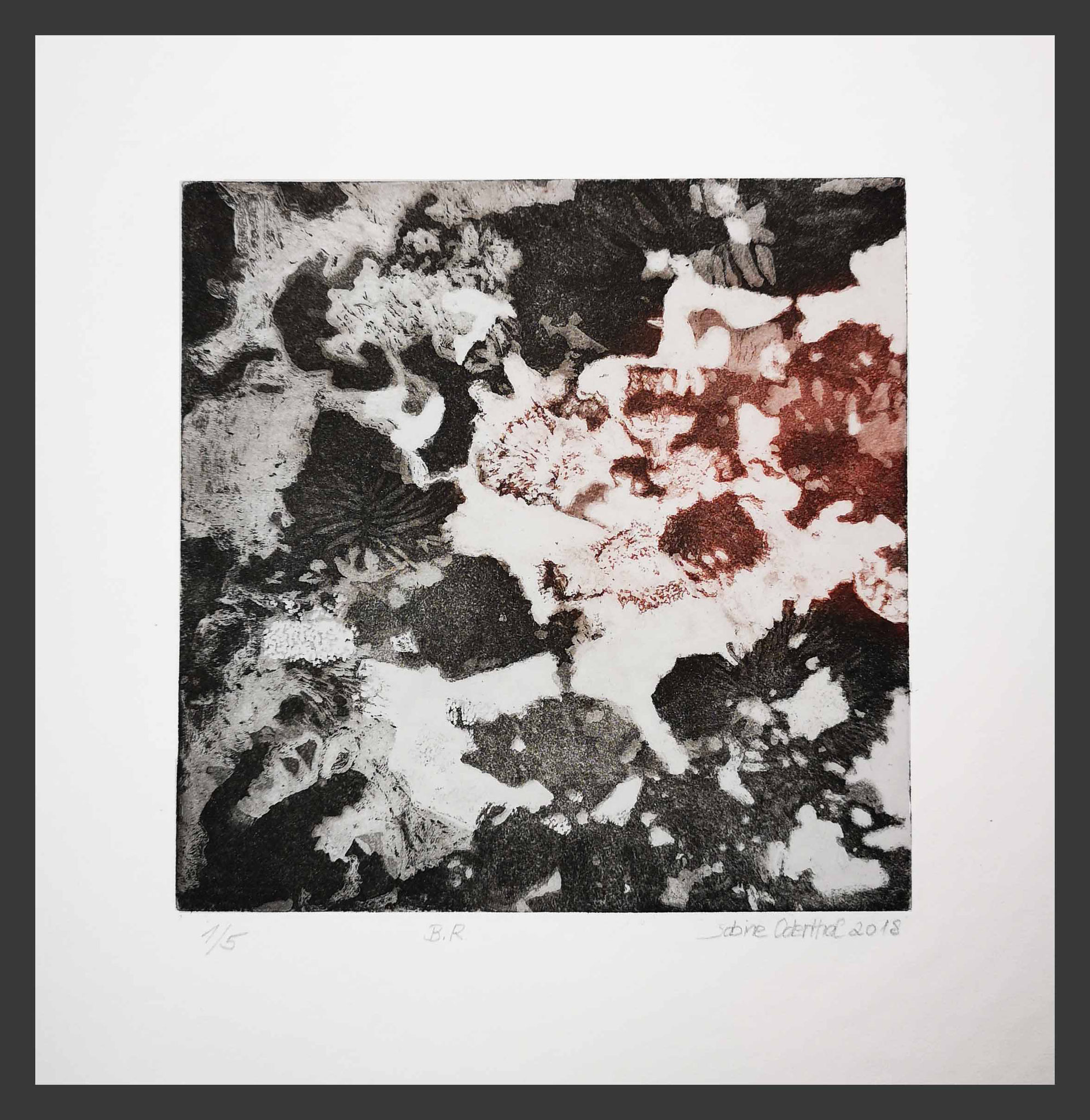 """B.R""  Pflanzen Abstraktion  Aquatinta Radierung 2018  20 cm x 20 cm  auf 32 x 32 cm Flachspapier"