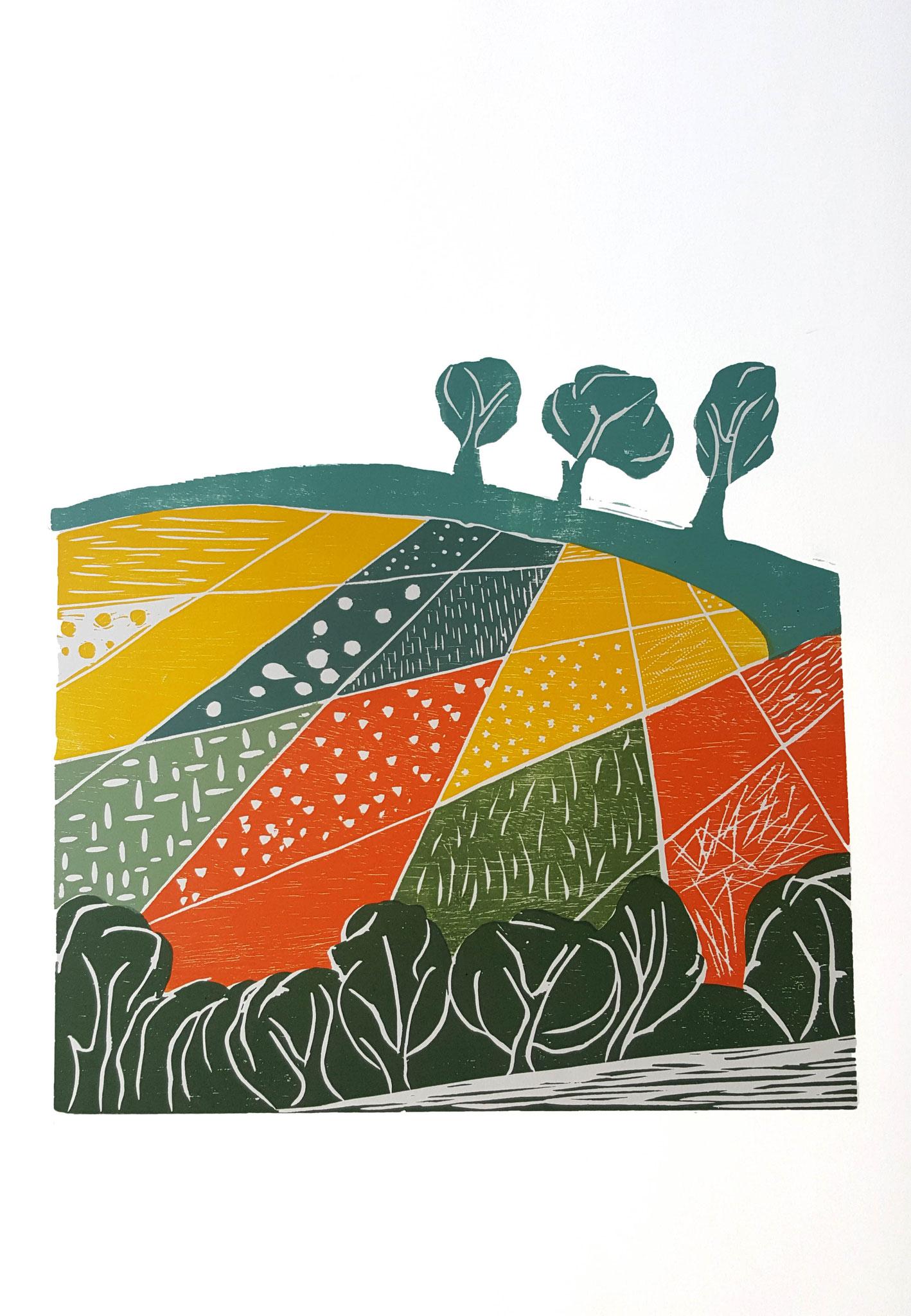 """""""Herbstacker""""  Holzschnitt 2015 Auflage: 25 Drucke 28 cm x 42 cm  auf 70 cm x 50 cm Aquarellpapier"""