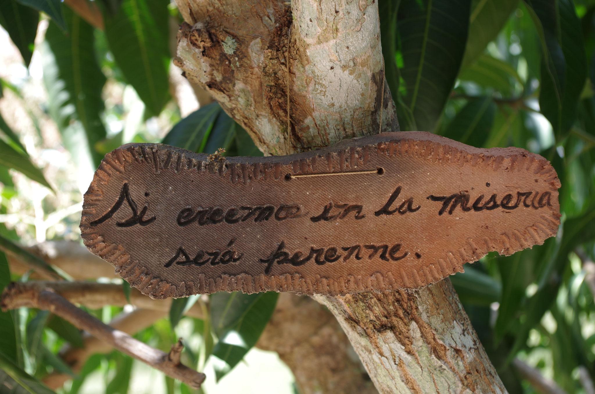 Les arbres fruitiers sont accompagnés des citations favorites du créateur des lieux